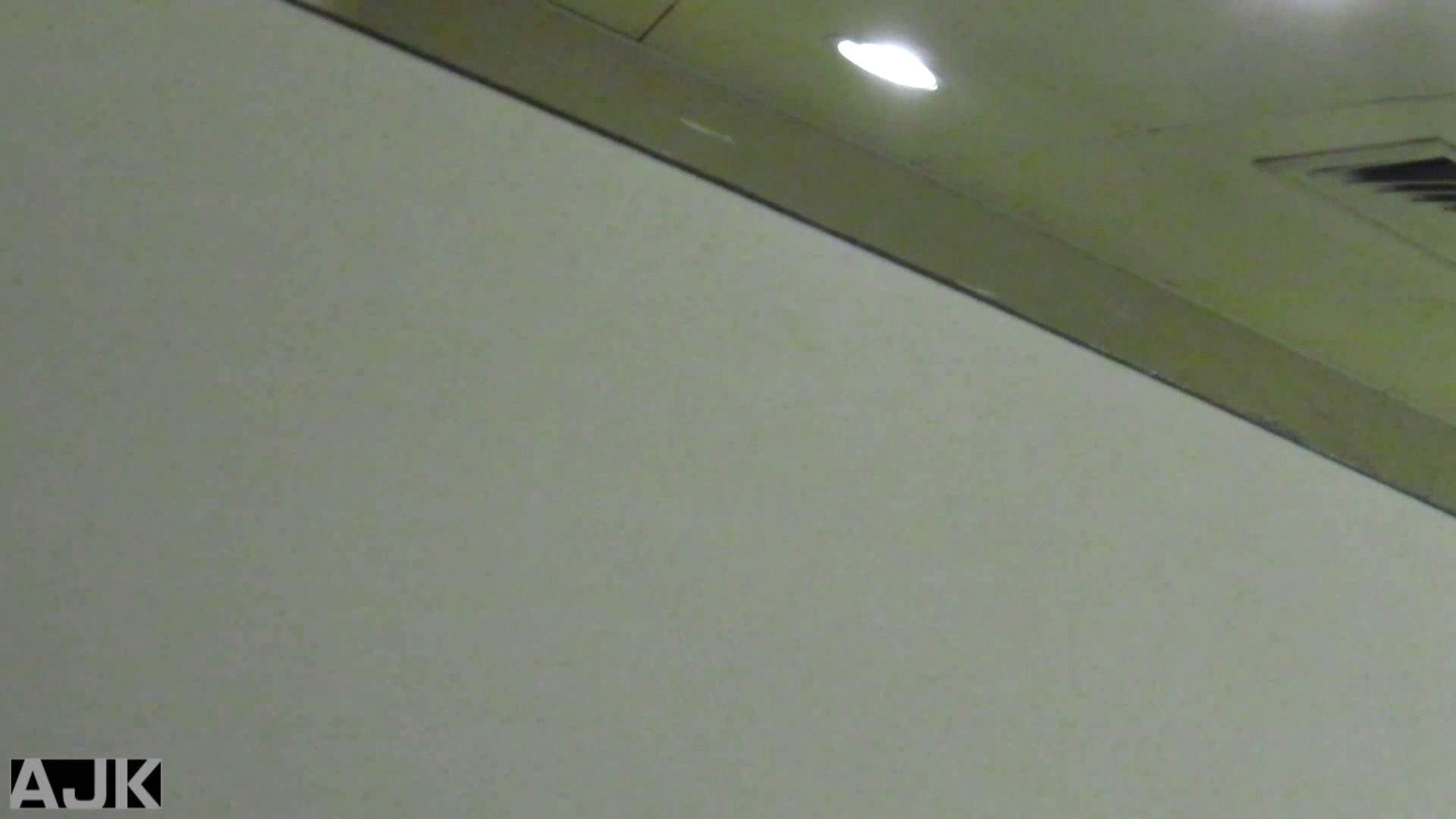 隣国上階級エリアの令嬢たちが集うデパートお手洗い Vol.06 便器 スケベ動画紹介 90枚 63