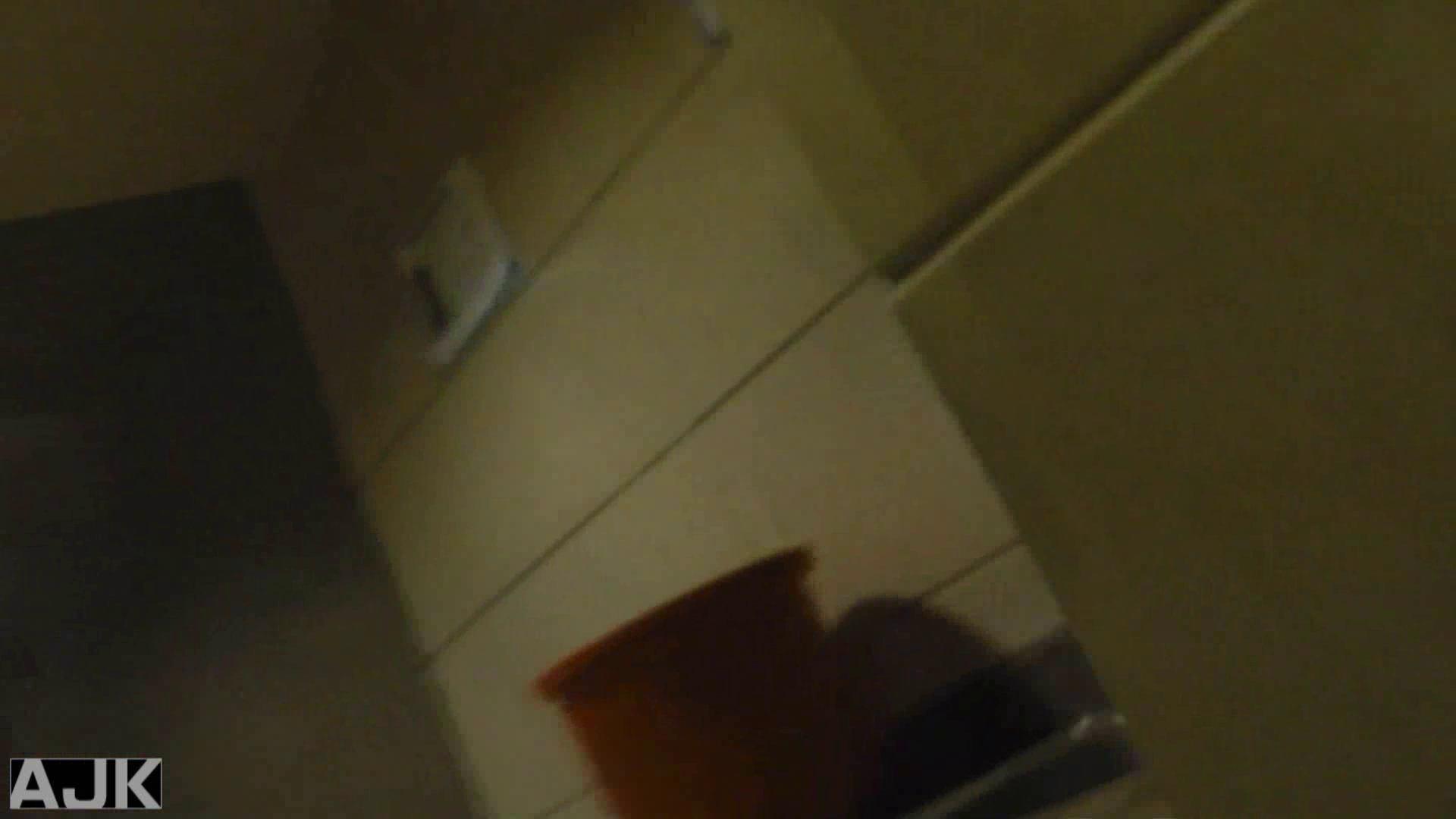 隣国上階級エリアの令嬢たちが集うデパートお手洗い Vol.09 おまんこ おめこ無修正画像 103枚 98