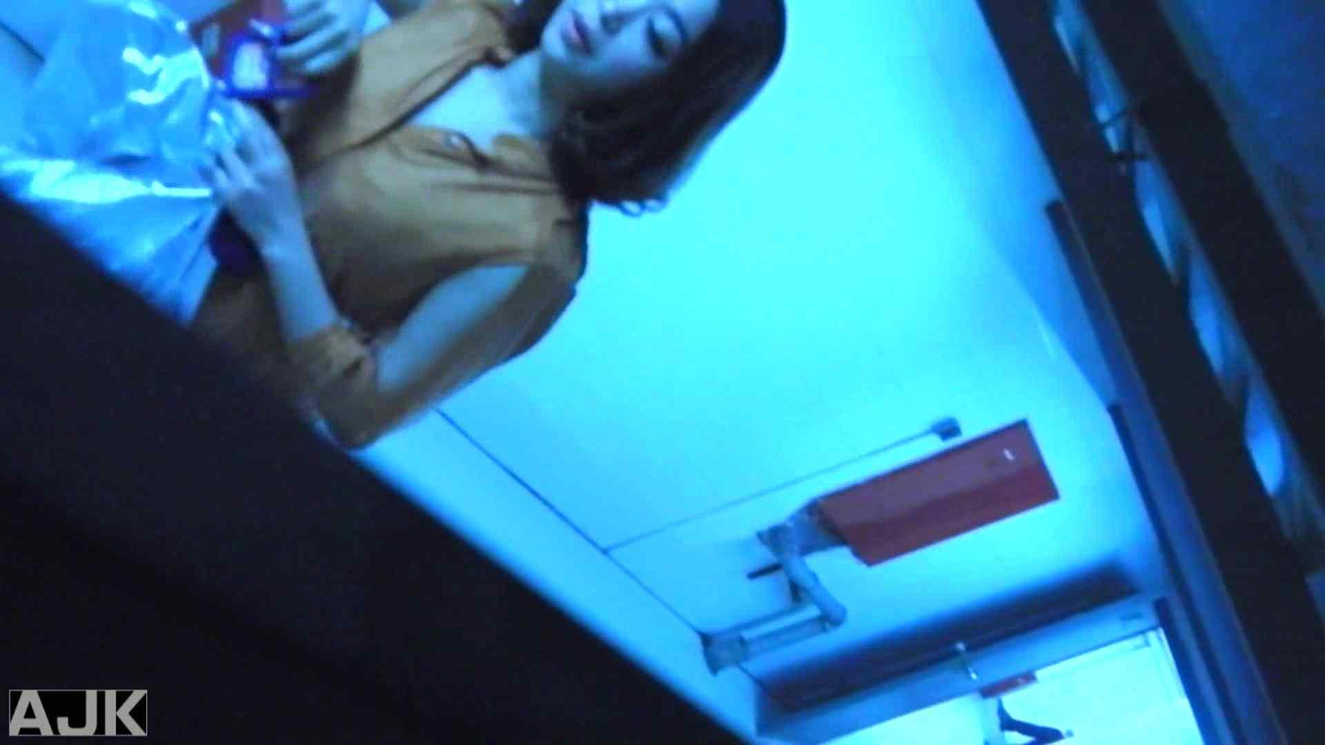 隣国上階級エリアの令嬢たちが集うデパートお手洗い Vol.12 オマンコ見放題 スケベ動画紹介 99枚 94