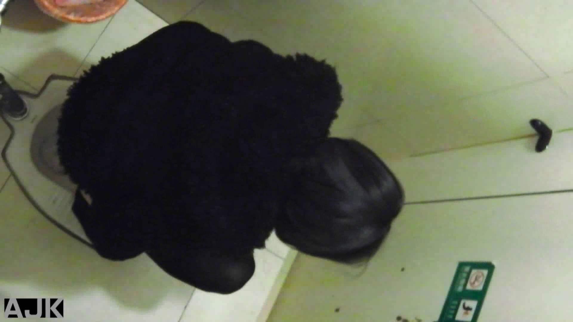 隣国上階級エリアの令嬢たちが集うデパートお手洗い Vol.19 便所の中まで すけべAV動画紹介 99枚 40