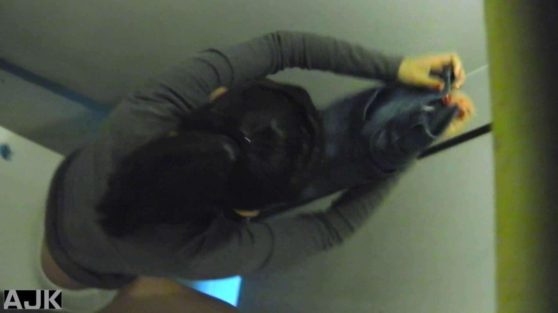 隣国上階級エリアの令嬢たちが集うデパートお手洗い Vol.21 盗撮編 ぱこり動画紹介 110枚 3