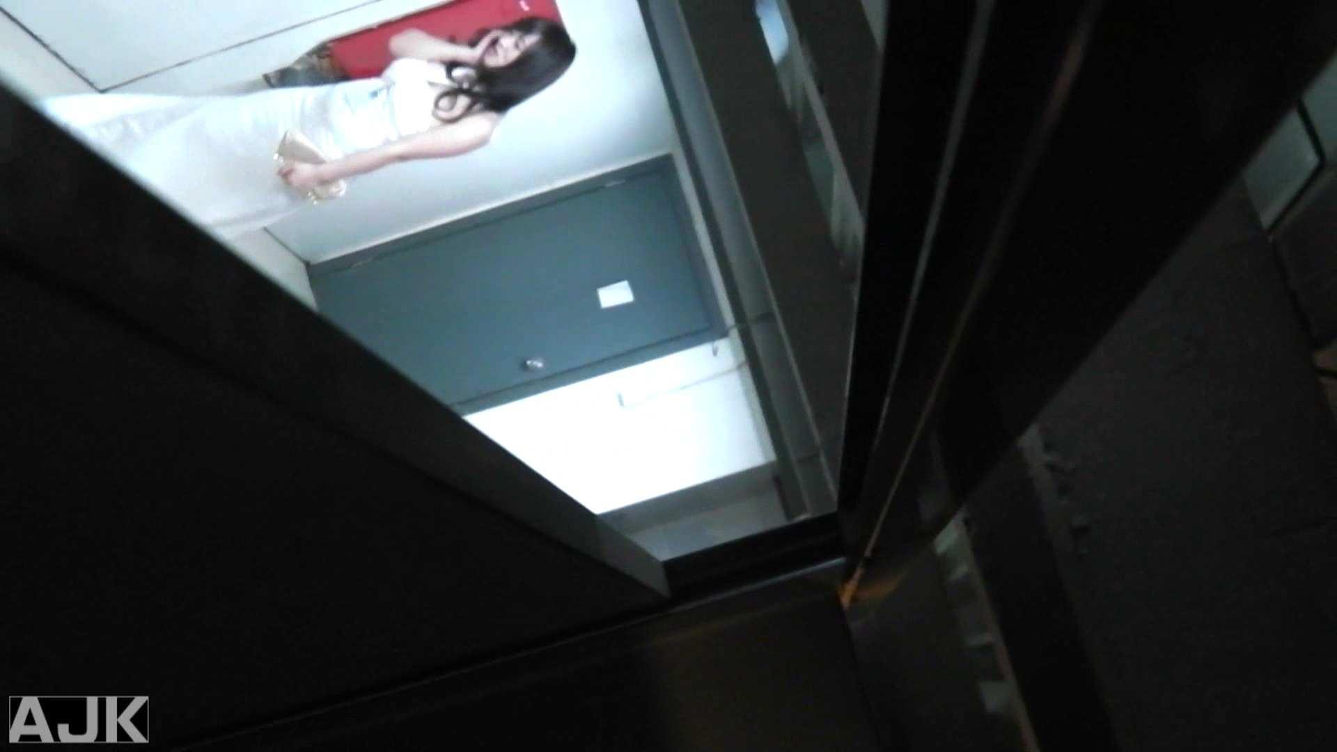 隣国上階級エリアの令嬢たちが集うデパートお手洗い Vol.25 女子トイレ AV無料動画キャプチャ 94枚 53