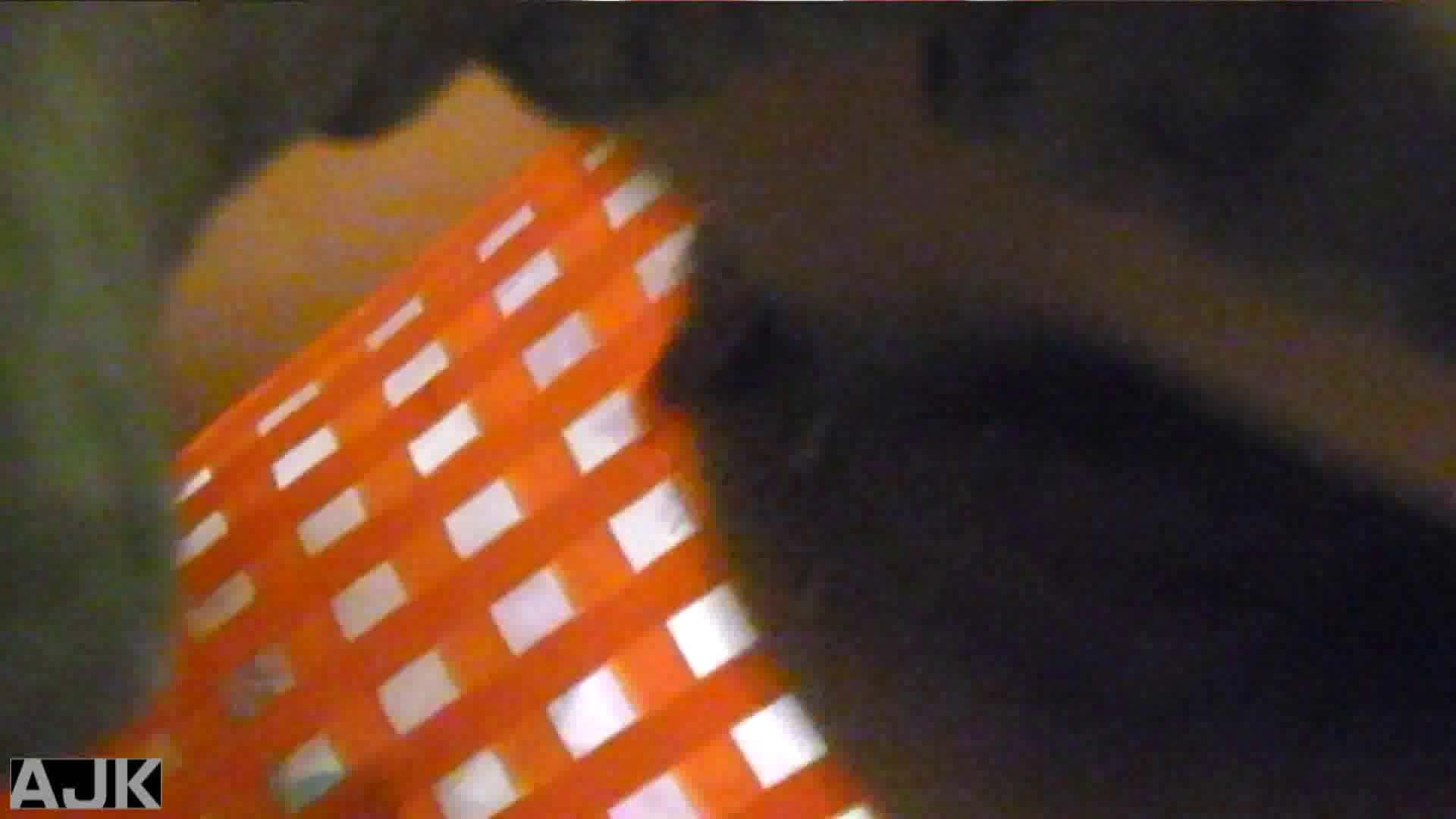 隣国上階級エリアの令嬢たちが集うデパートお手洗い Vol.29 オマンコ見放題 オマンコ動画キャプチャ 108枚 39