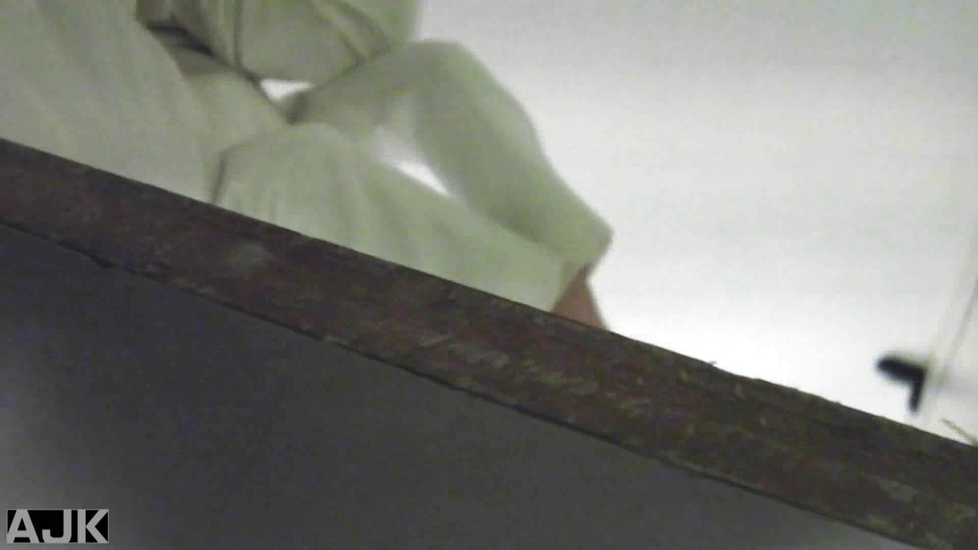 隣国上階級エリアの令嬢たちが集うデパートお手洗い Vol.29 おまんこ オマンコ動画キャプチャ 108枚 65
