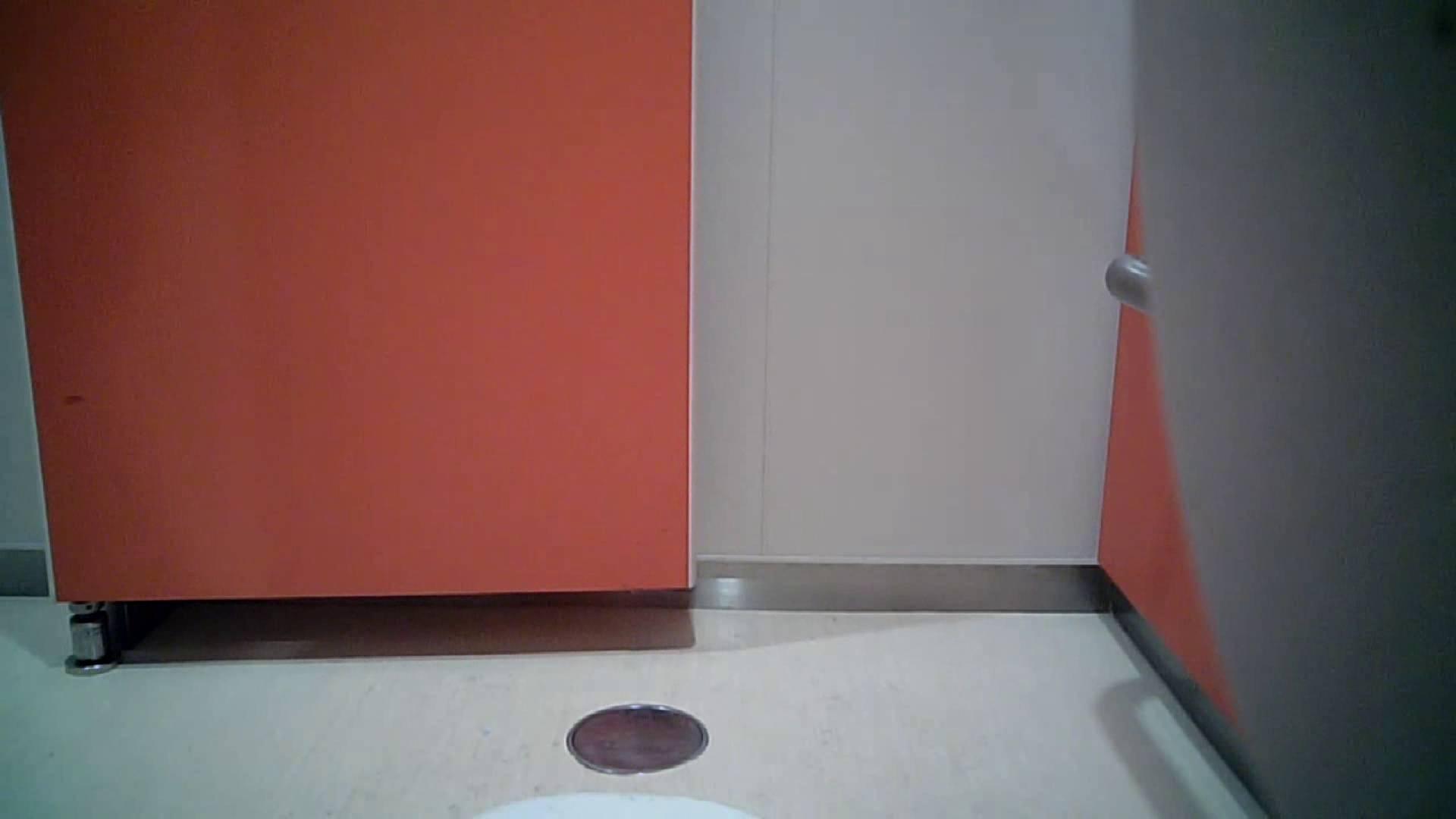 痴態洗面所 Vol.05 今回は下からのアングルたっぷりで!! 洗面所のぞき アダルト動画キャプチャ 105枚 53