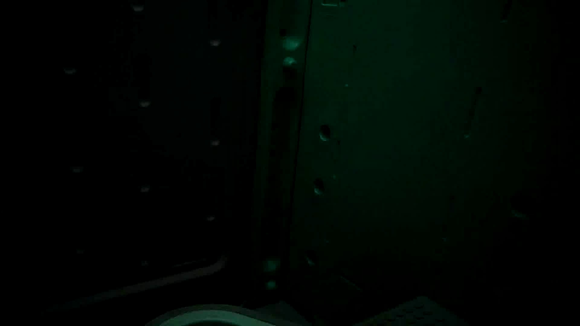 痴態洗面所 Vol.09 美女系、清楚系、ギャル系、時々祭り系?? 美女 戯れ無修正画像 90枚 65