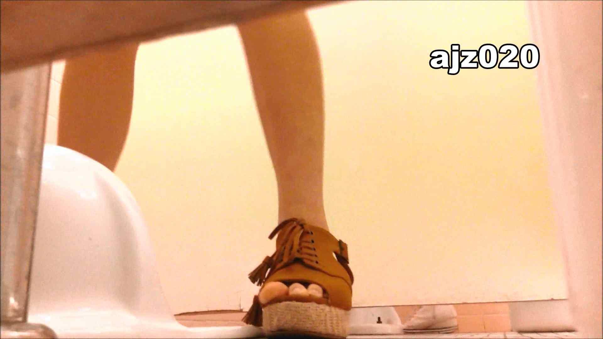 某有名大学女性洗面所 vol.20 排泄 AV動画キャプチャ 101枚 31