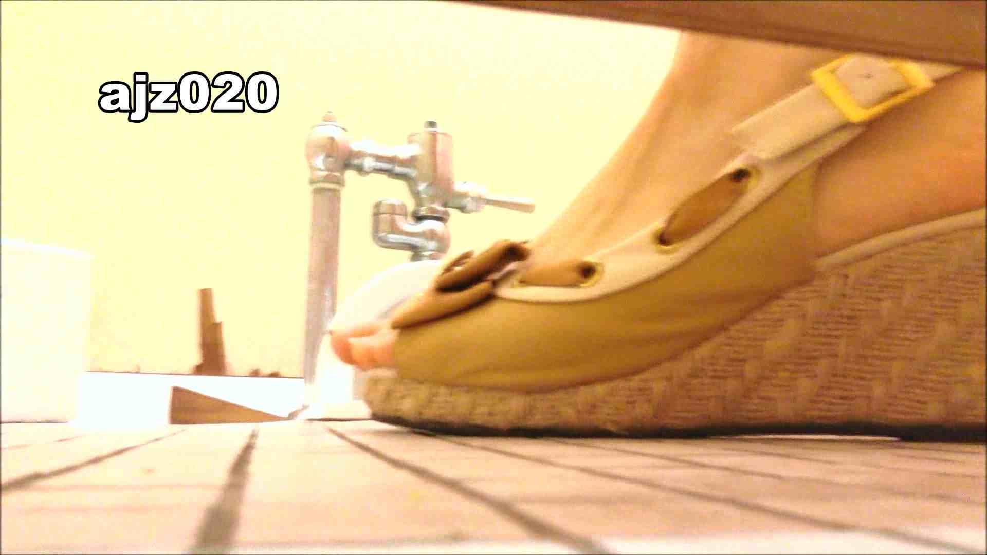 某有名大学女性洗面所 vol.20 ギャル達 おまんこ動画流出 101枚 66