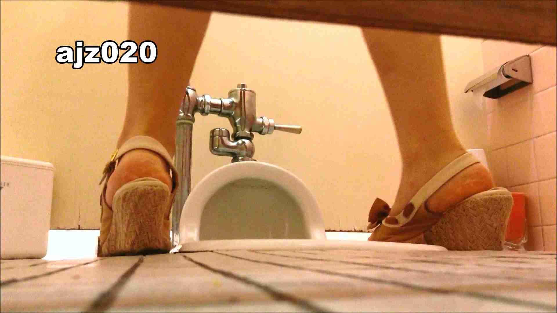 某有名大学女性洗面所 vol.20 洗面所のぞき SEX無修正画像 101枚 68