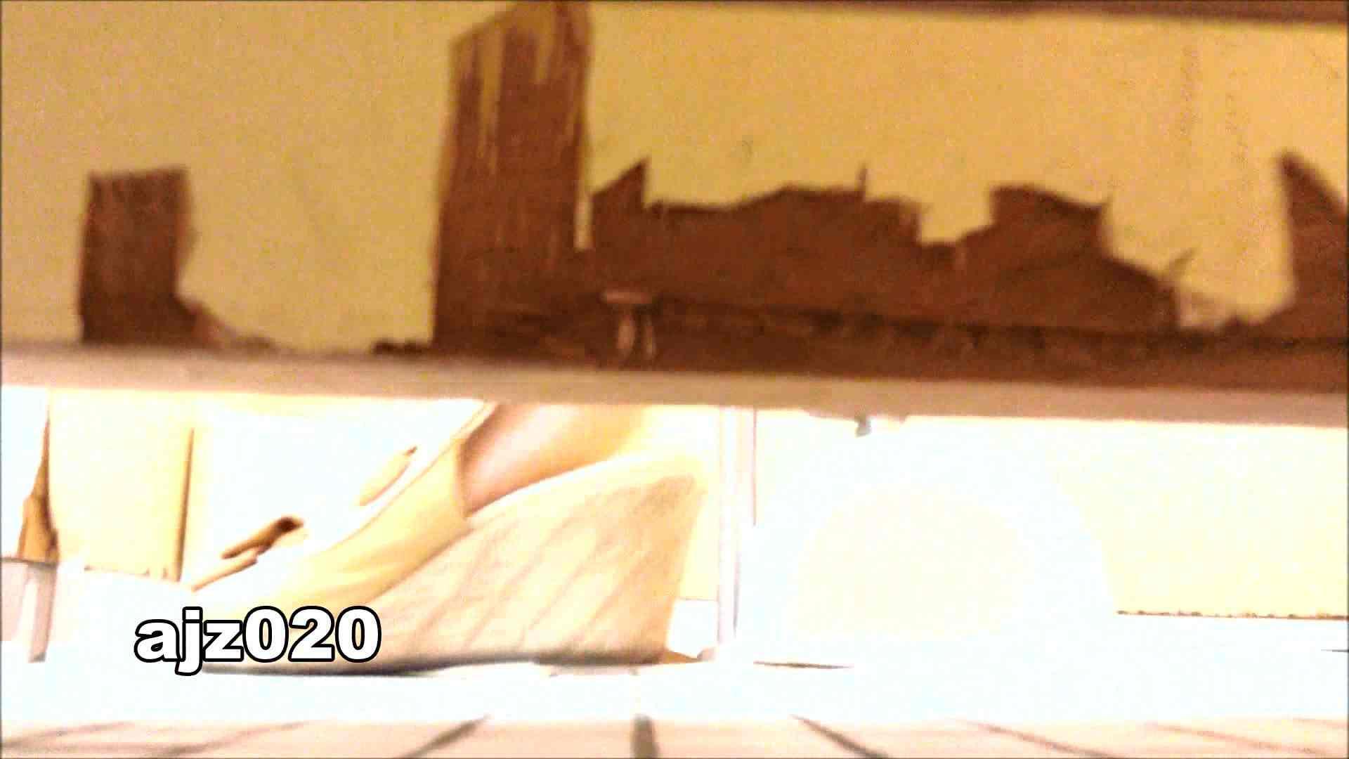 某有名大学女性洗面所 vol.20 排泄 AV動画キャプチャ 101枚 79