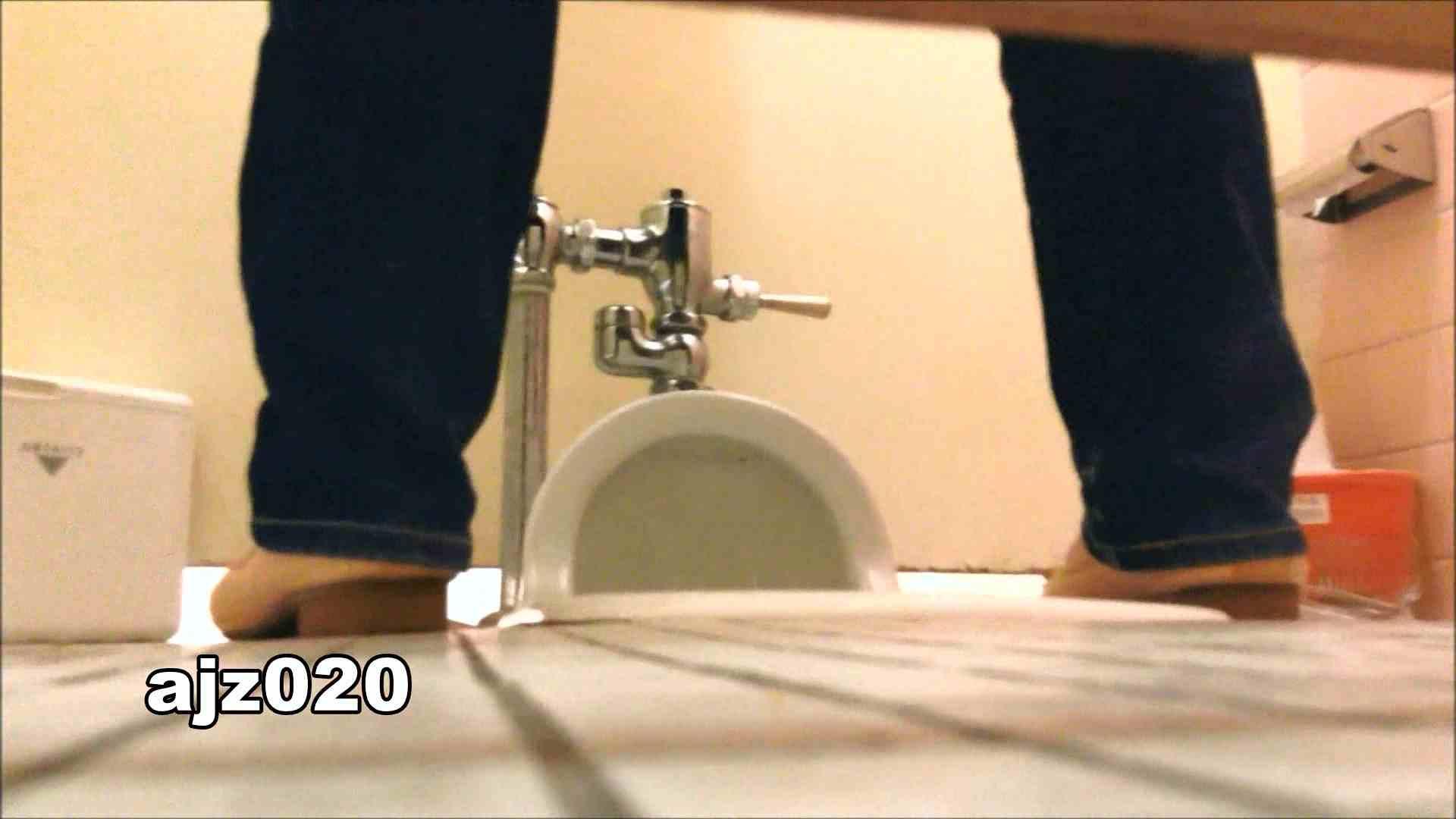 某有名大学女性洗面所 vol.20 排泄 AV動画キャプチャ 101枚 87
