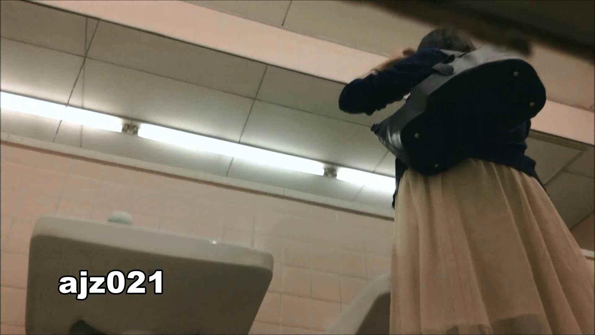 某有名大学女性洗面所 vol.21 排泄 おまんこ動画流出 92枚 23