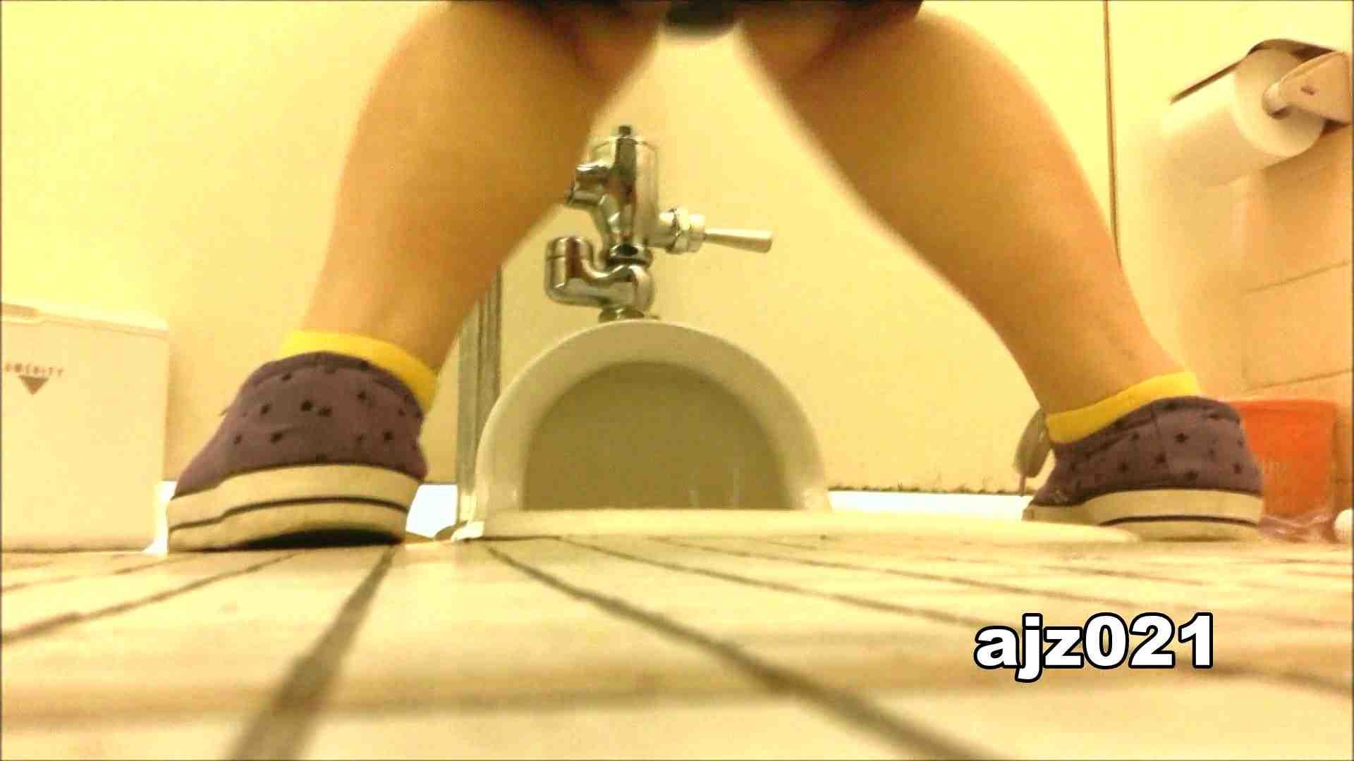 某有名大学女性洗面所 vol.21 排泄 おまんこ動画流出 92枚 55