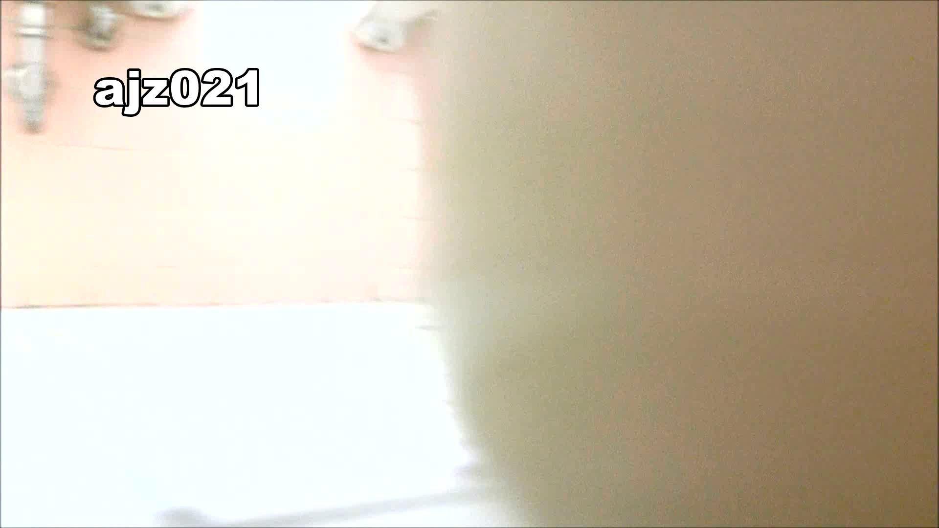 某有名大学女性洗面所 vol.21 排泄 おまんこ動画流出 92枚 87