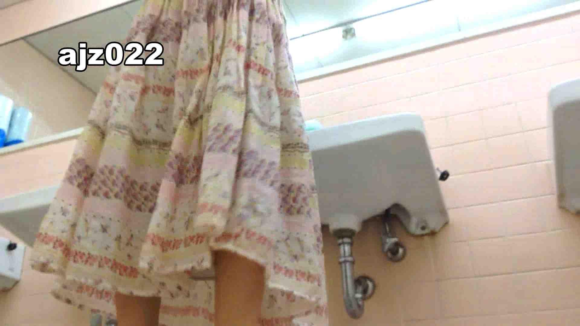 某有名大学女性洗面所 vol.22 投稿 オメコ動画キャプチャ 92枚 23