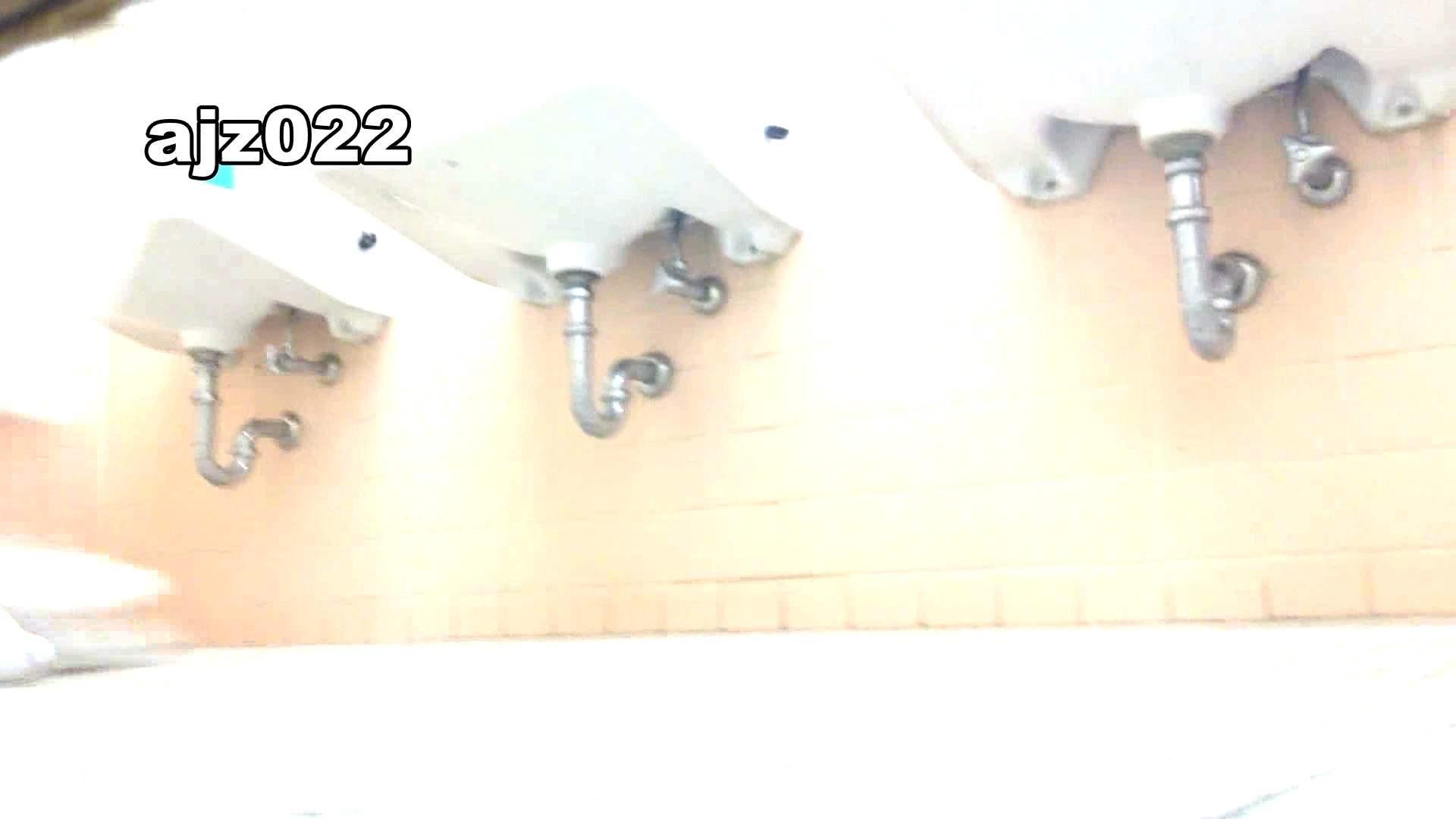 某有名大学女性洗面所 vol.22 盛合せ おめこ無修正画像 92枚 52