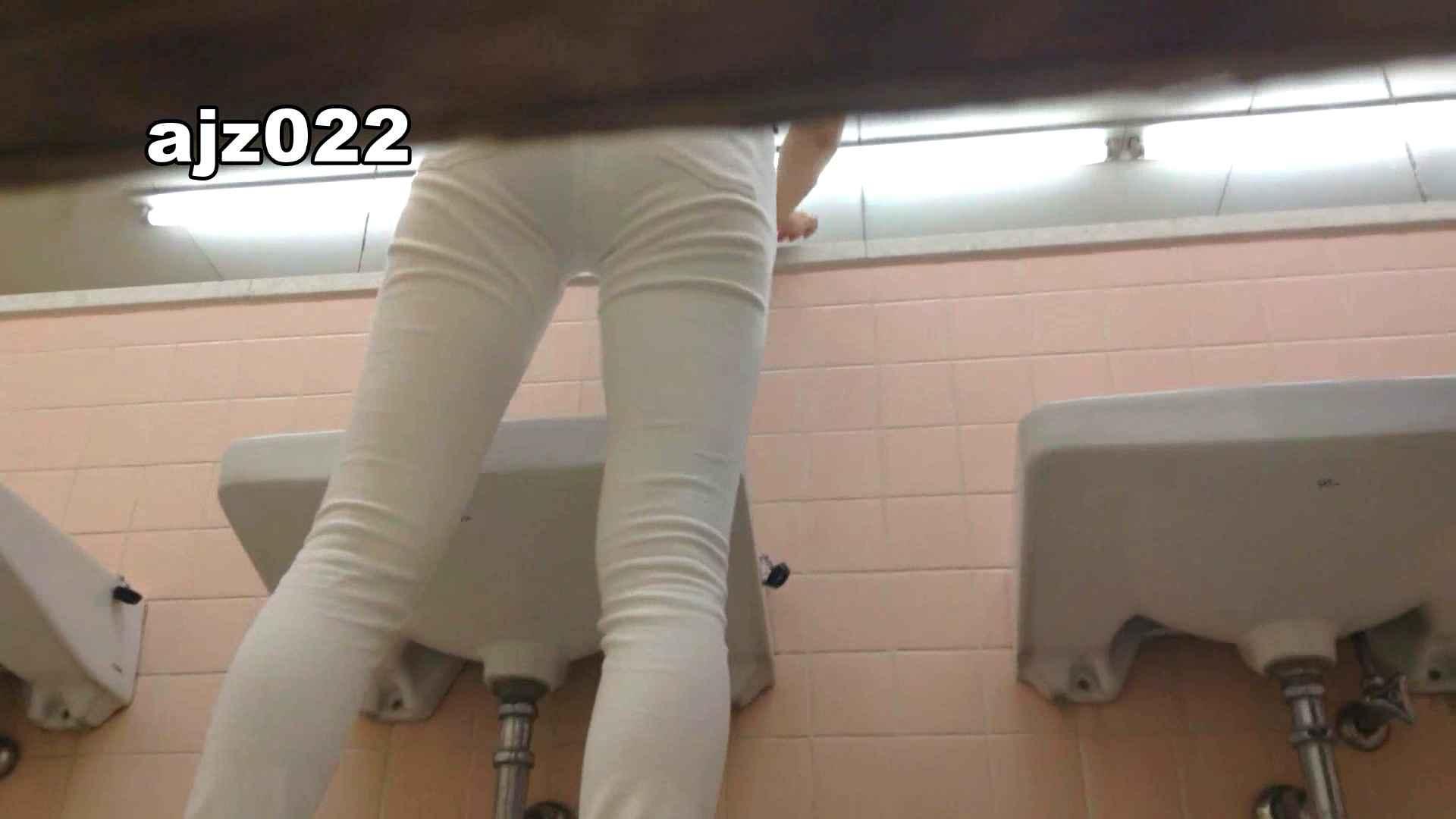 某有名大学女性洗面所 vol.22 潜入 セックス画像 92枚 53