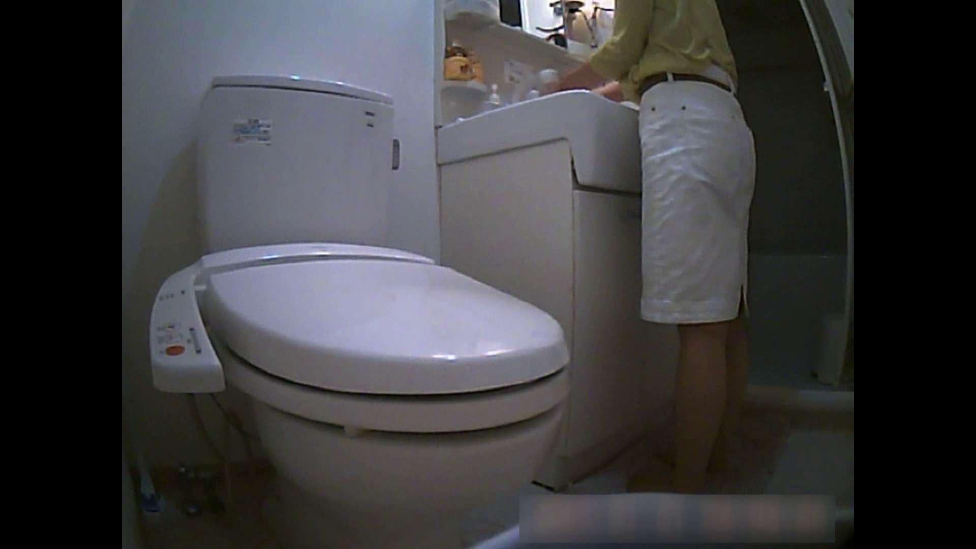 乳首大き目の24歳Y子 トイレ編 お姉さんのSEX AV動画キャプチャ 76枚 74