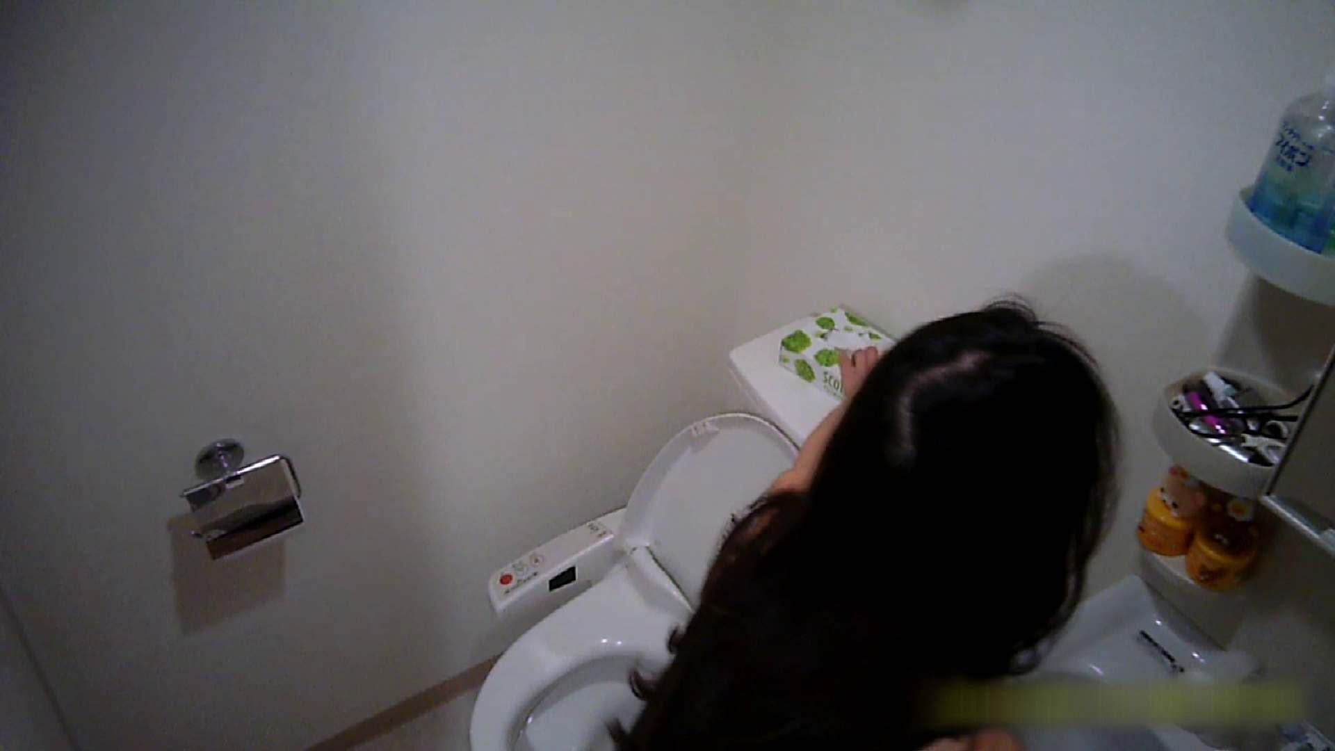 清楚な顔してかなり敏感なE子25歳(仮名)Vol.05 裸でトイレ編 美肌 AV動画キャプチャ 90枚 38