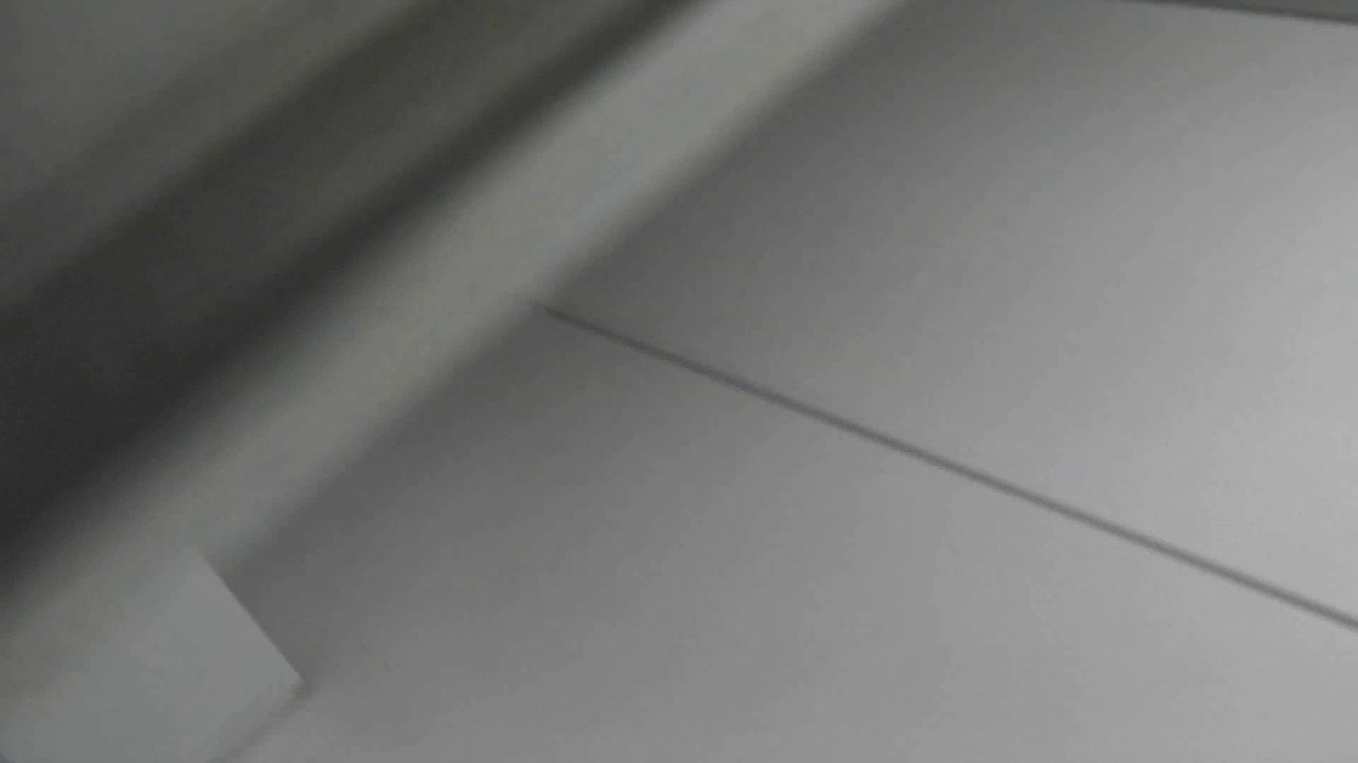美女詰め合わせギフトvol.04 デパート+α 洗面所のぞき 濡れ場動画紹介 82枚 39