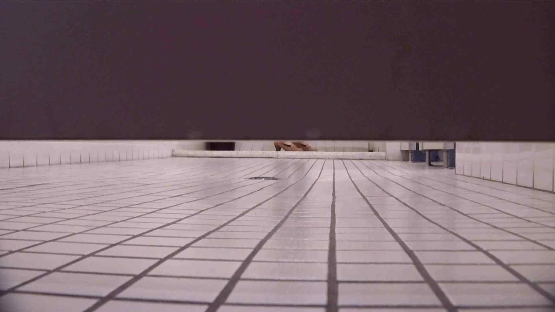 お銀さんの「洗面所突入レポート!!」無料お試し動画!!その1 盛合せ オマンコ動画キャプチャ 76枚 57