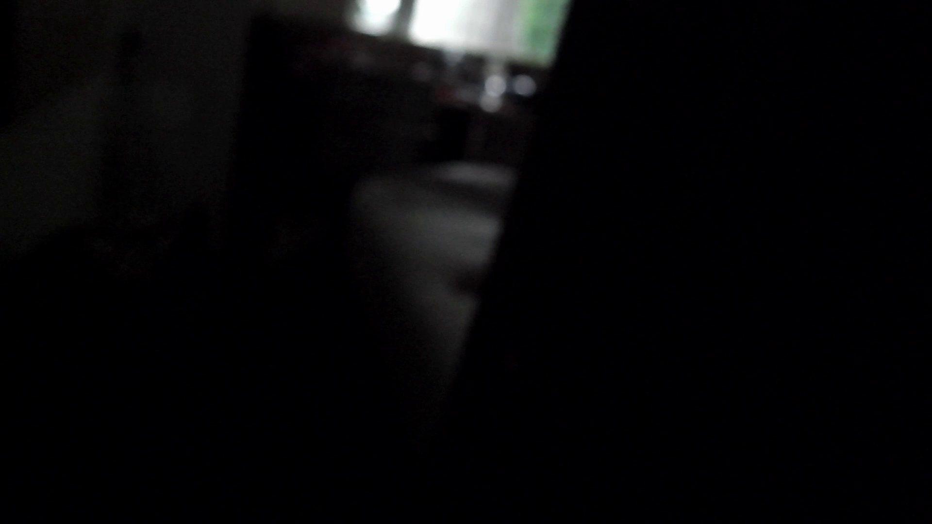 ヒトニアラヅNo.01 侵入 細身体型 性交動画流出 80枚 24