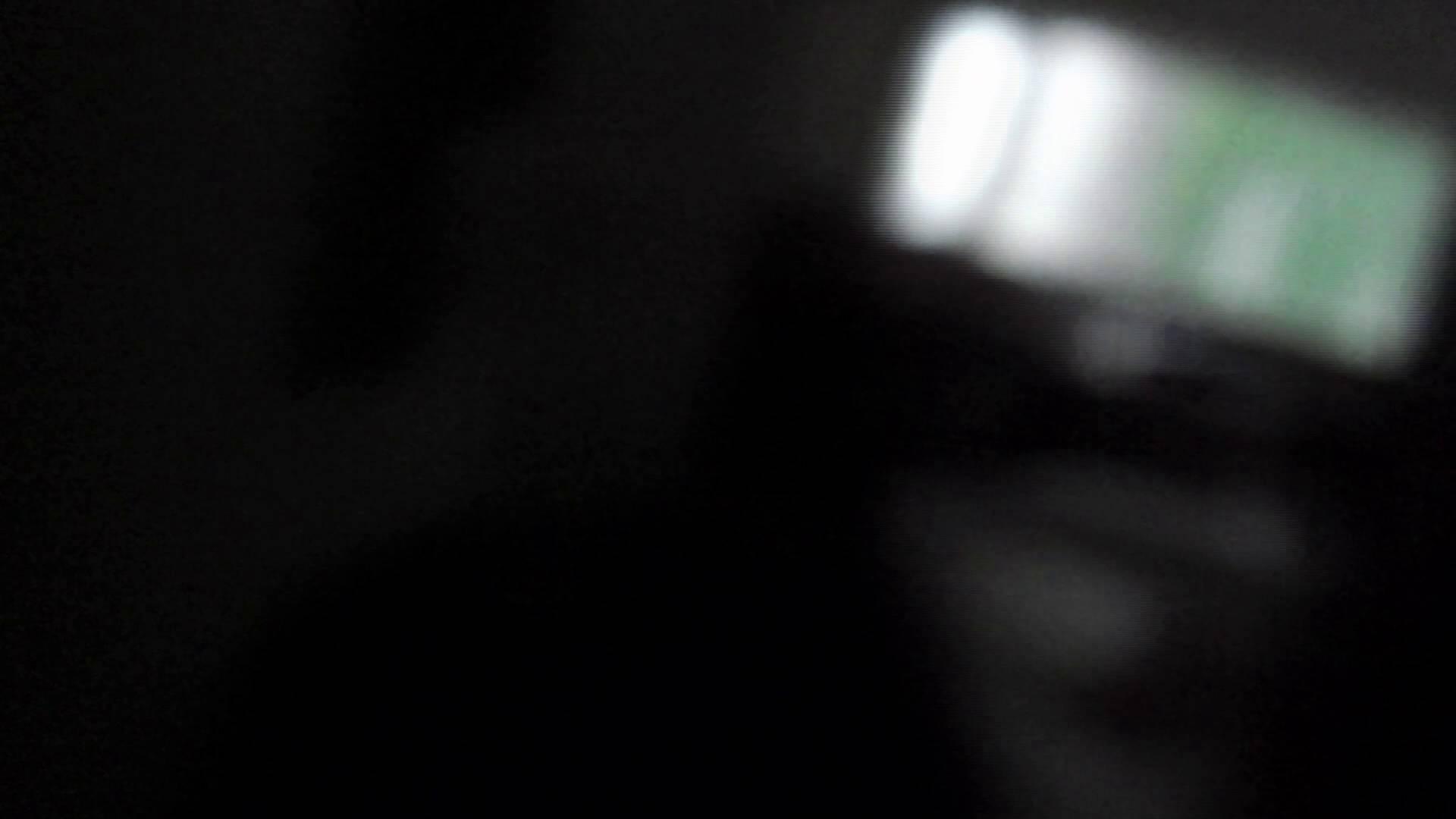 ヒトニアラヅNo.01 侵入 細身体型 性交動画流出 80枚 31