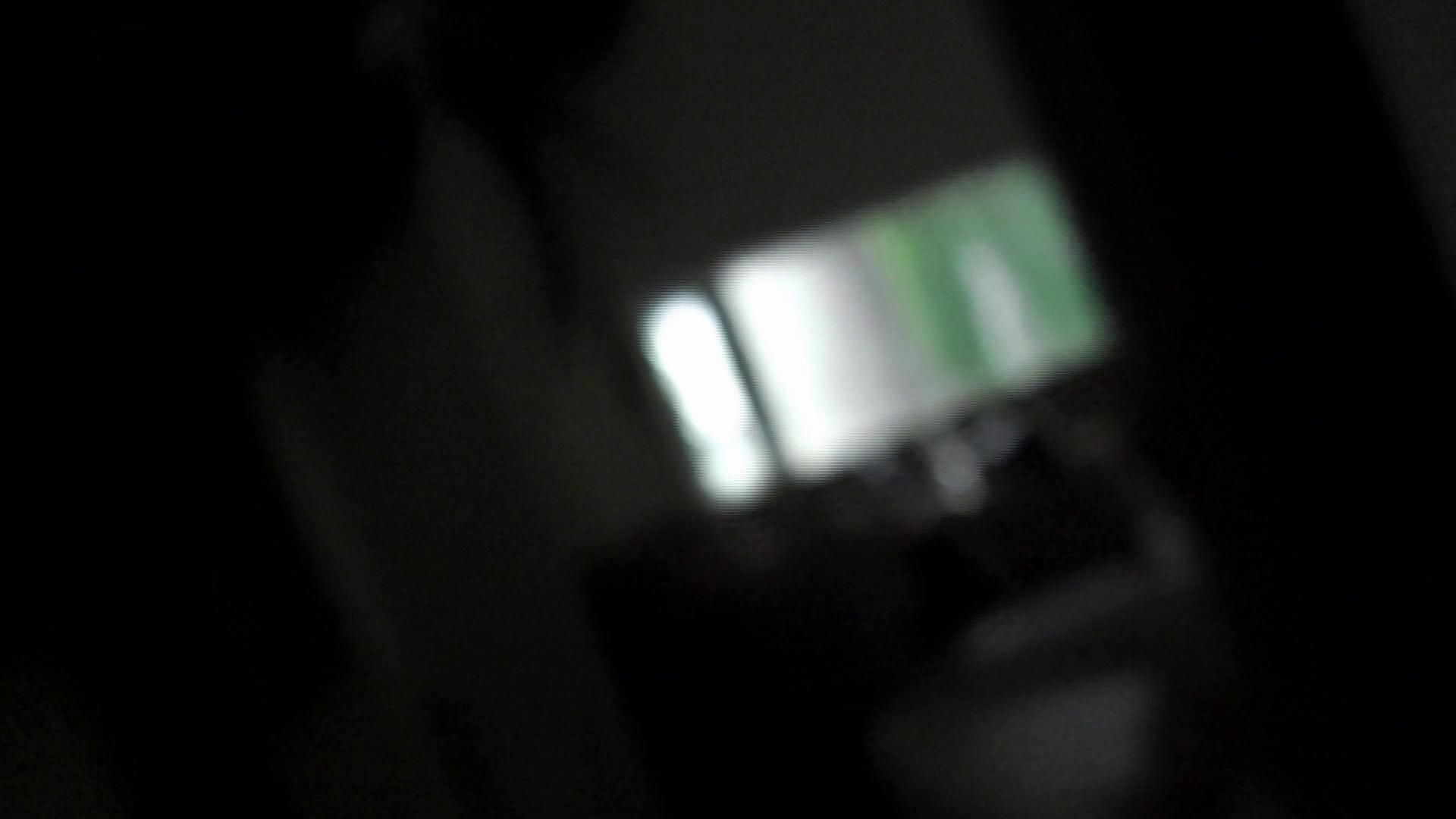 ヒトニアラヅNo.01 侵入 桃色乳首 戯れ無修正画像 80枚 41