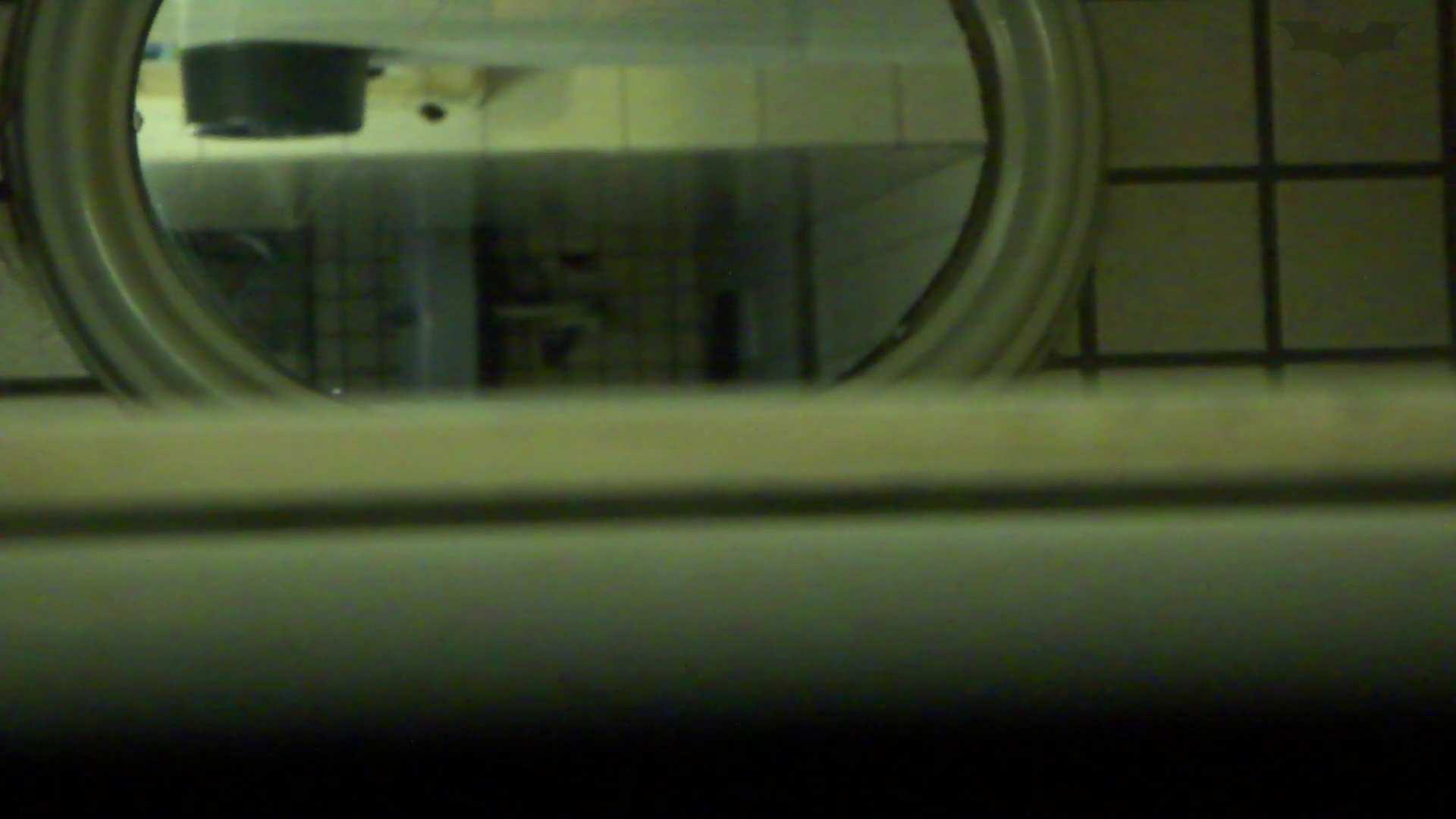 ギャルのツルピカ潜入盗撮!Vol.08 洗面所のぞき オメコ無修正動画無料 82枚 43