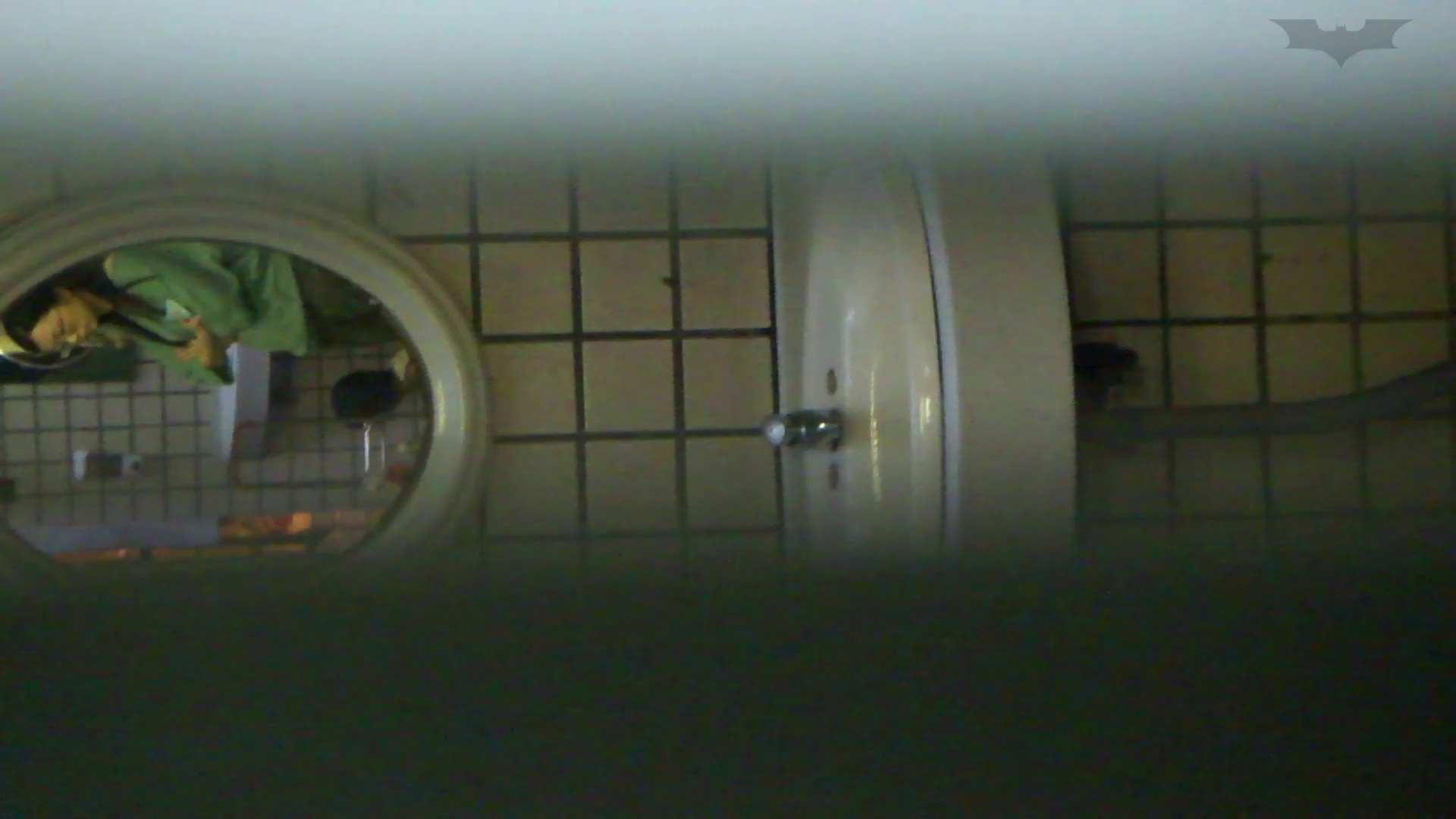 ギャルのツルピカ潜入盗撮!Vol.11 洗面所のぞき オマンコ無修正動画無料 100枚 28