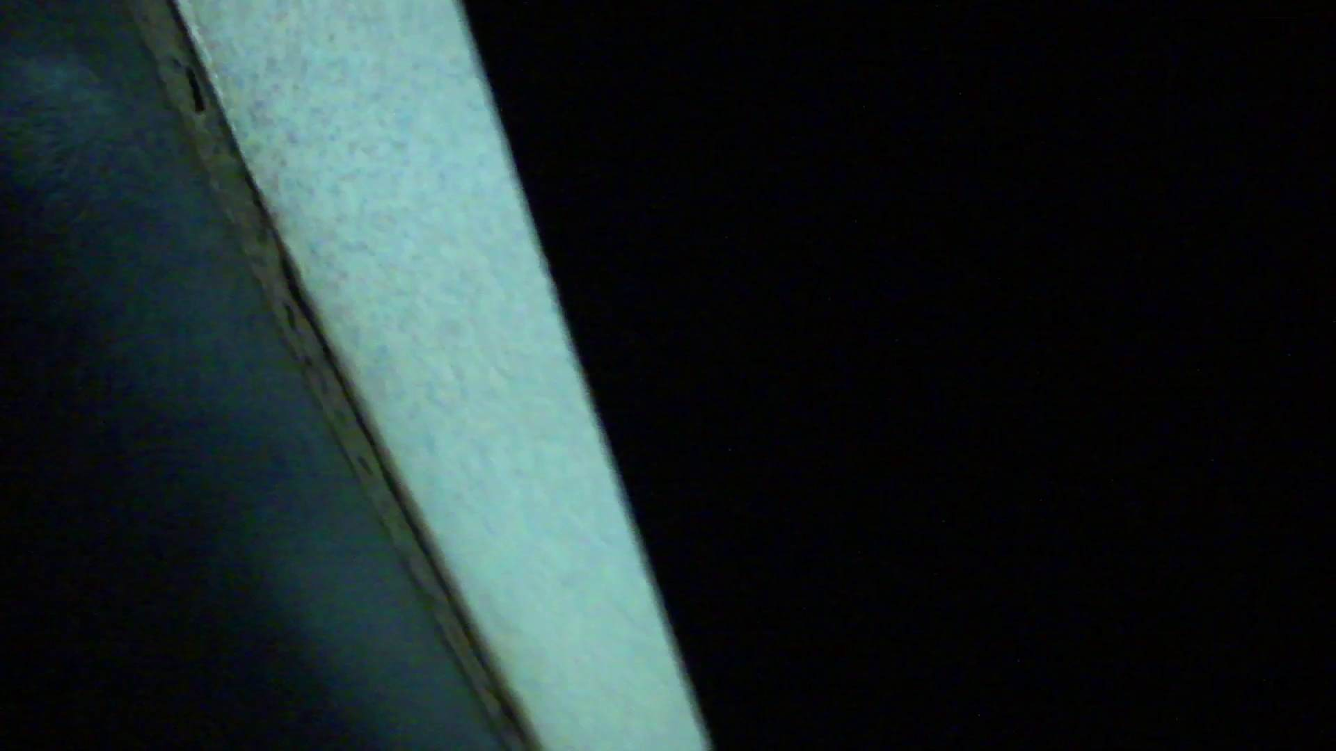 ギャルのツルピカ潜入盗撮!Vol.11 洗面所のぞき オマンコ無修正動画無料 100枚 83