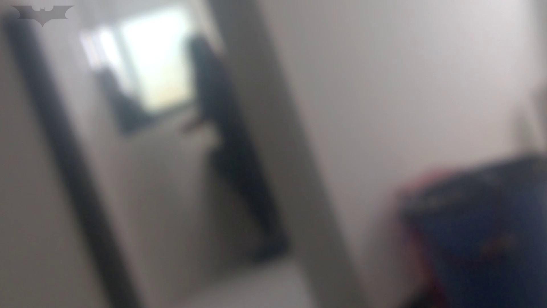JD盗撮 美女の洗面所の秘密 Vol.07 丸見え 性交動画流出 83枚 3