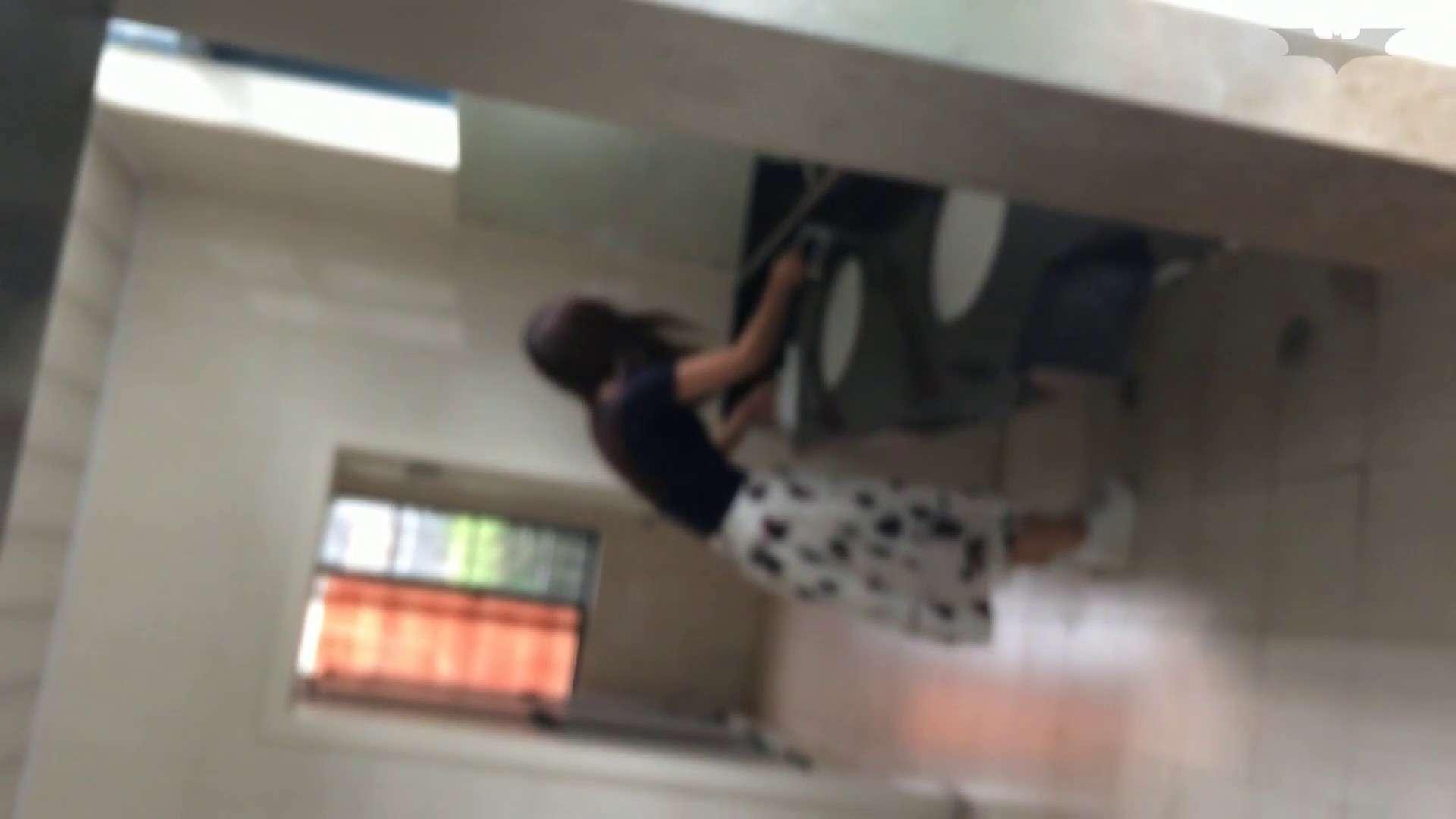 JD盗撮 美女の洗面所の秘密 Vol.45 細身体型 AV動画キャプチャ 110枚 14