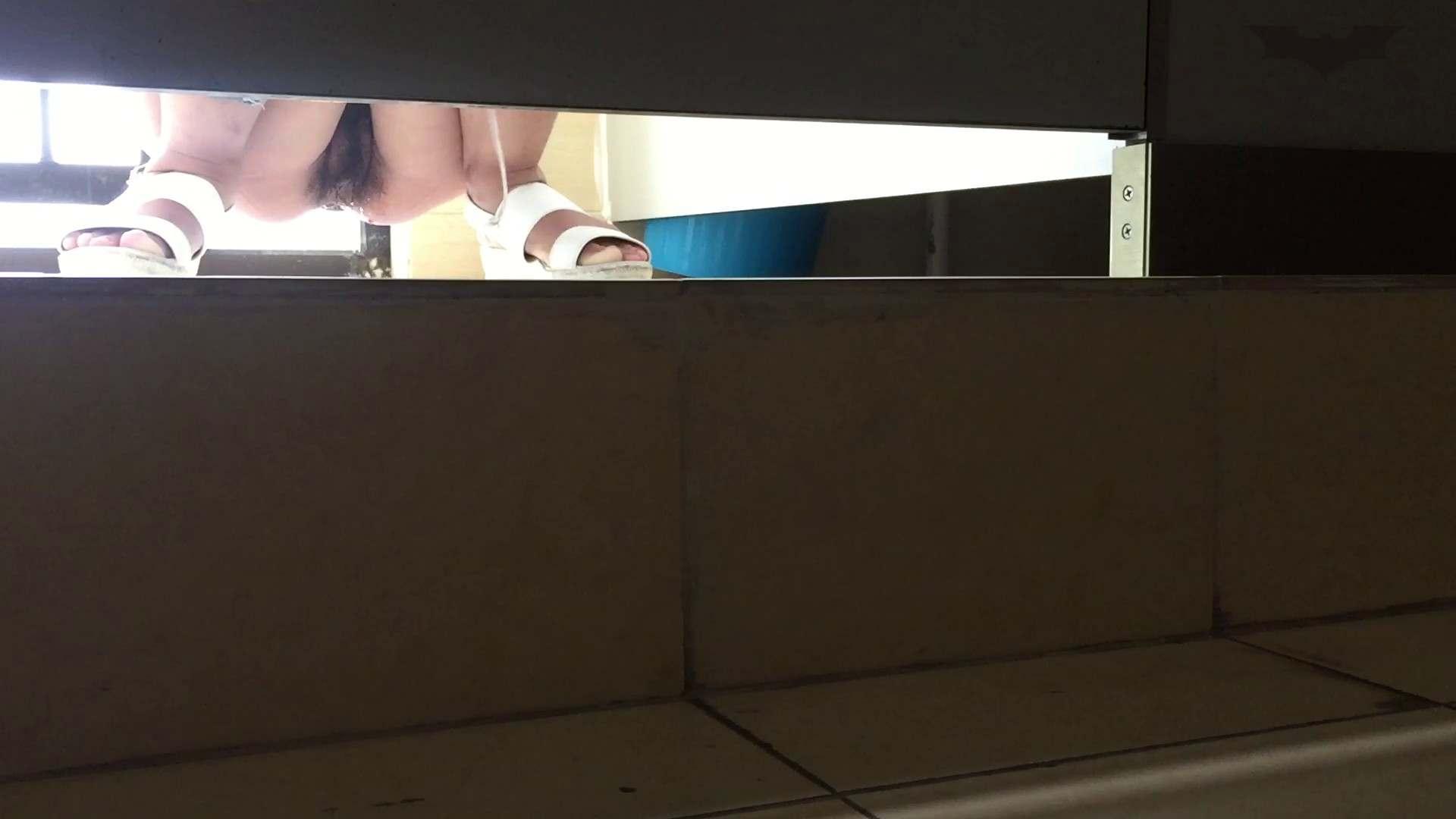 JD盗撮 美女の洗面所の秘密 Vol.66 洗面所のぞき AV無料動画キャプチャ 110枚 82