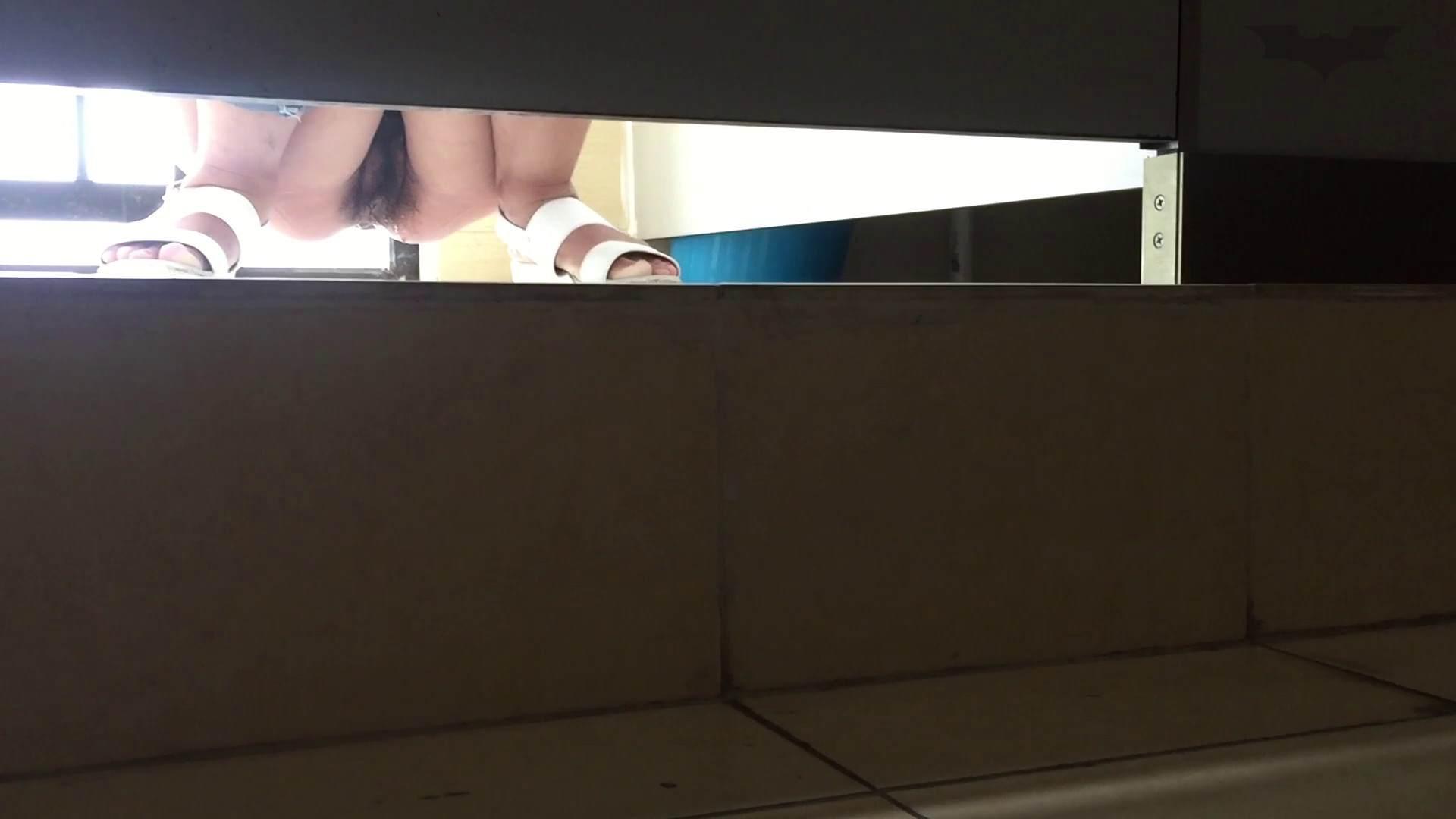 JD盗撮 美女の洗面所の秘密 Vol.66 盗撮編 濡れ場動画紹介 110枚 84