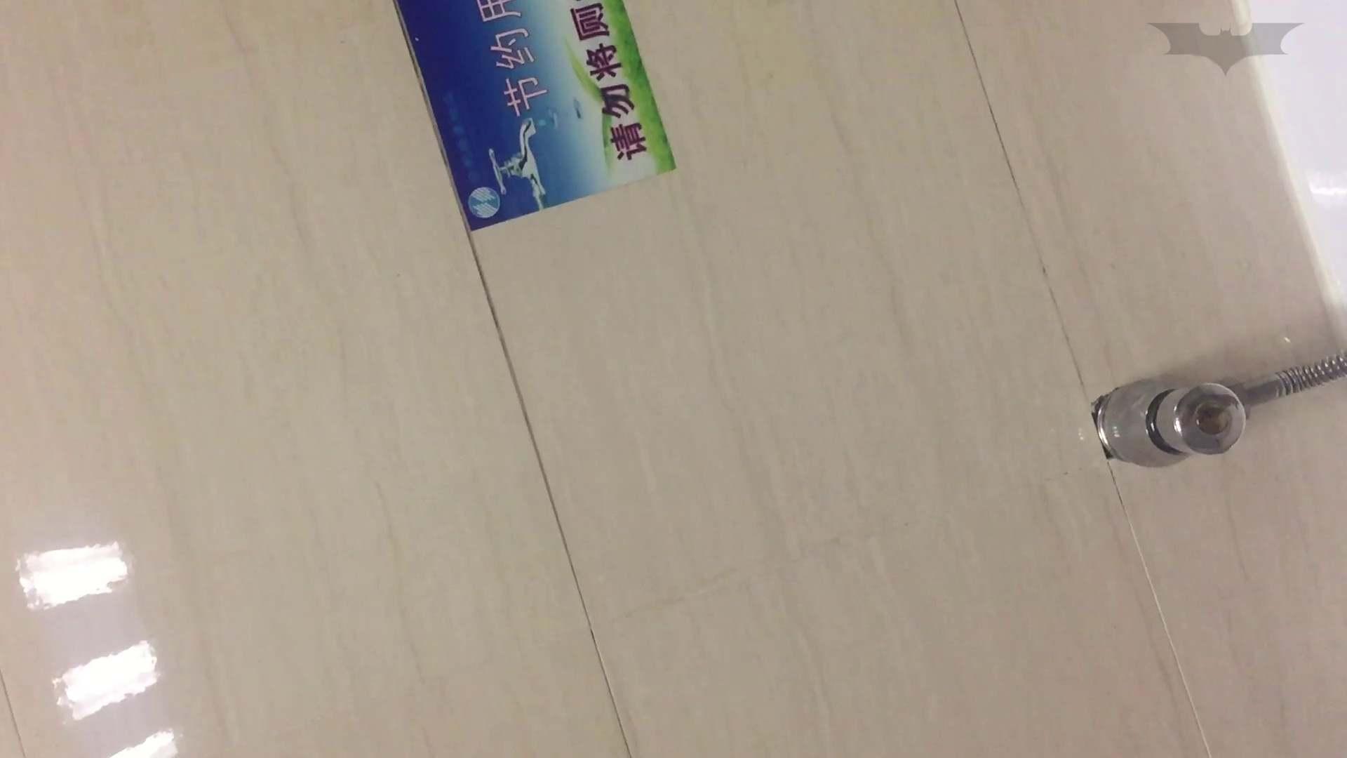 JD盗撮 美女の洗面所の秘密 Vol.72 高画質 ワレメ無修正動画無料 88枚 61