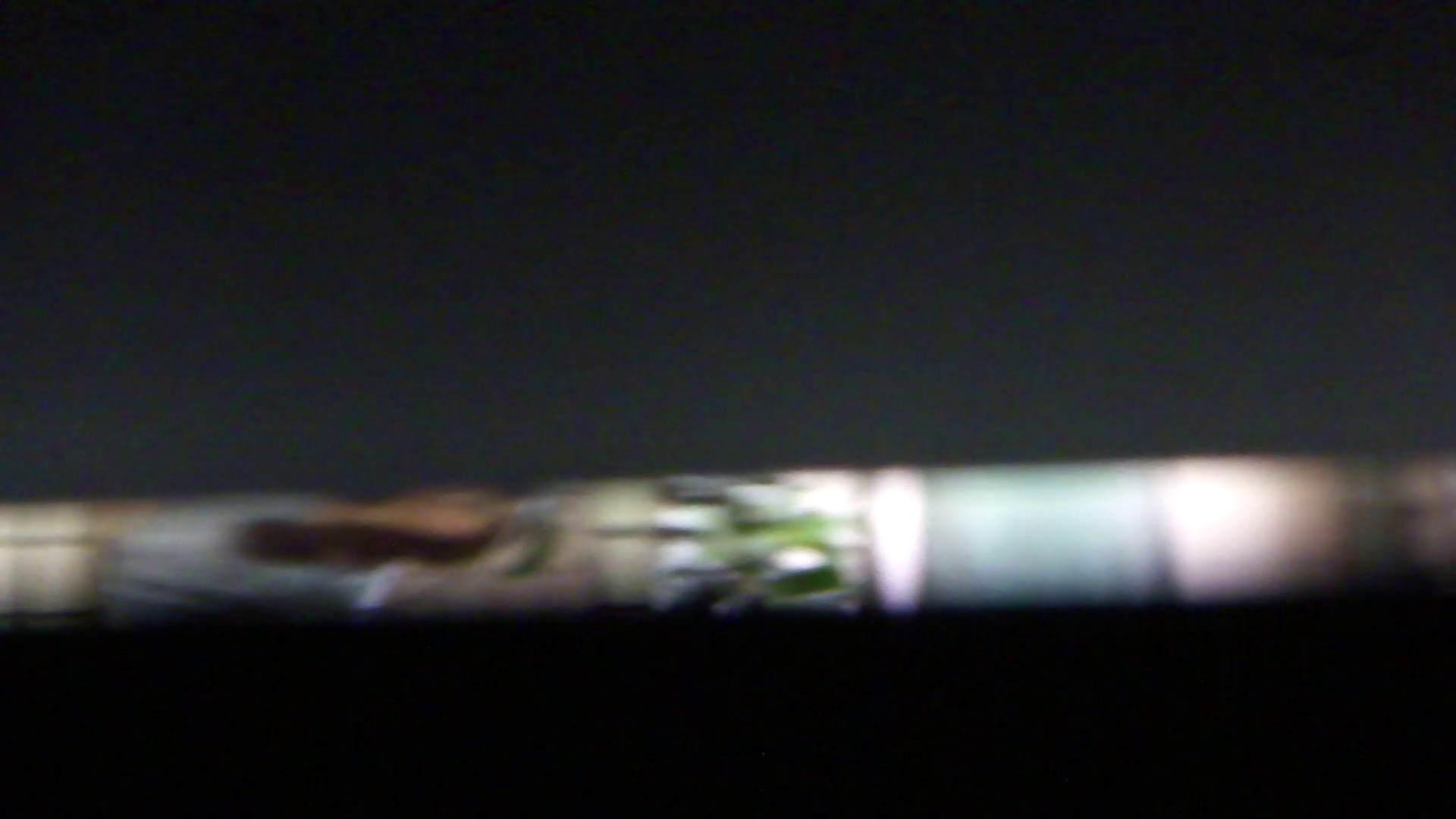 JD盗撮 美女の洗面所の秘密 Vol.76 トイレ盗撮 オマンコ無修正動画無料 100枚 79