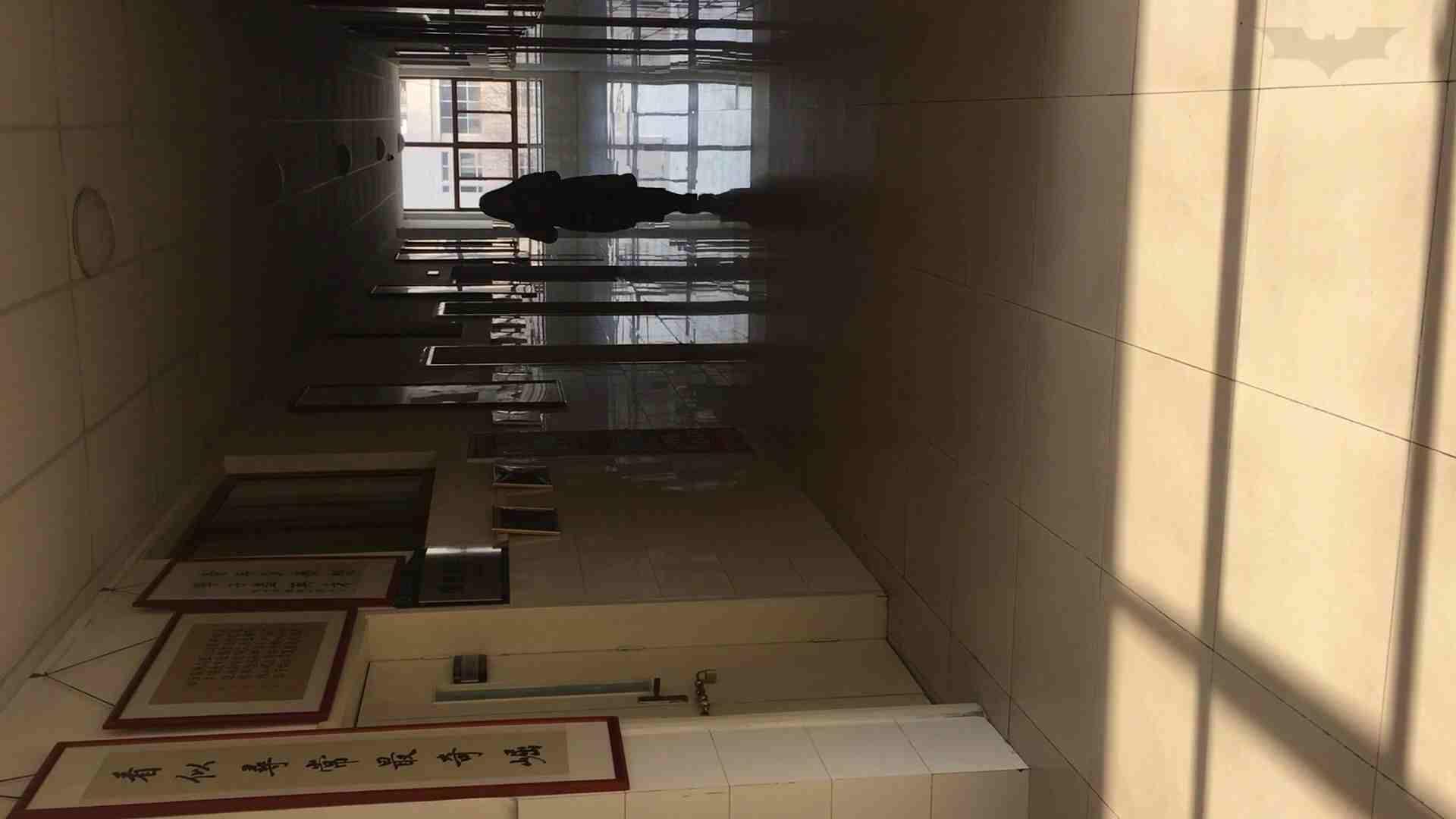 芸術大学ガチ潜入盗撮 JD盗撮 美女の洗面所の秘密 Vol.88 潜入 AV動画キャプチャ 83枚 64