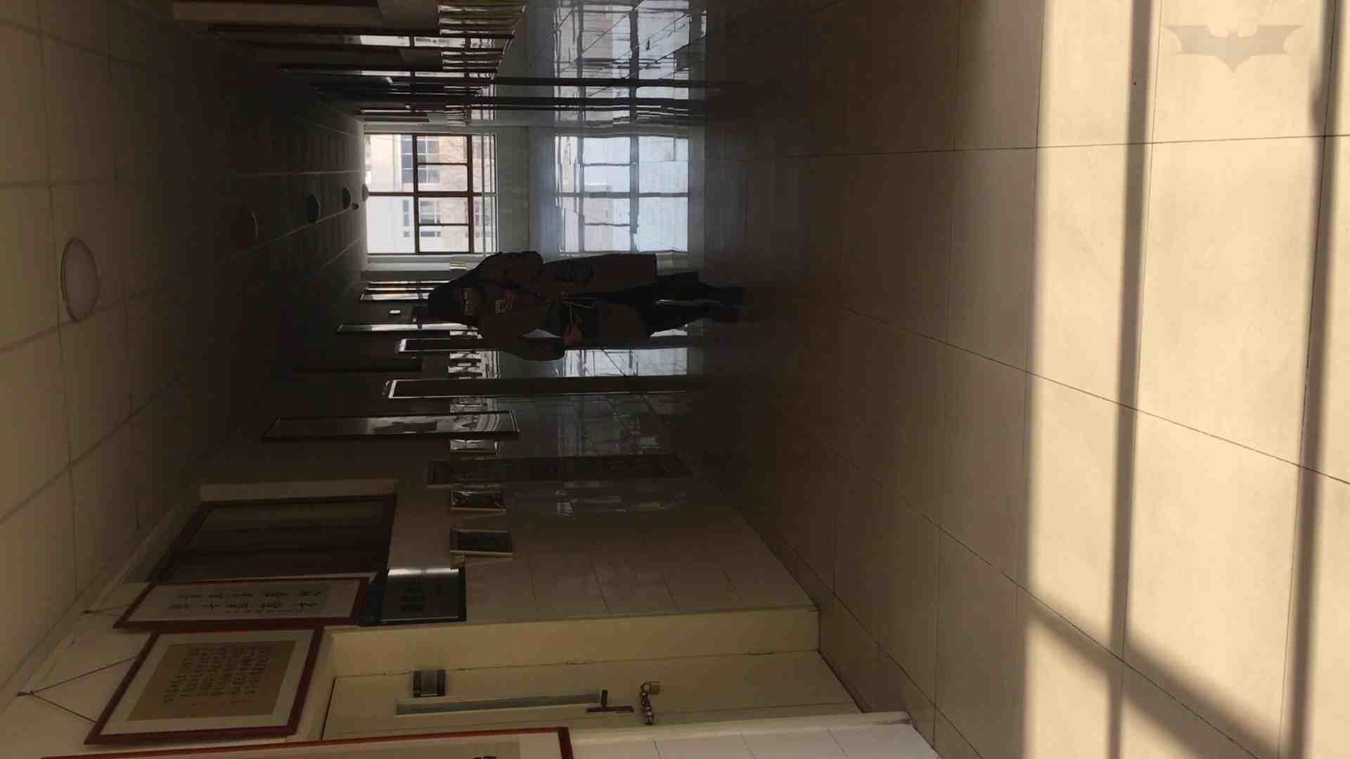 芸術大学ガチ潜入盗撮 JD盗撮 美女の洗面所の秘密 Vol.88 細身体型  83枚 66