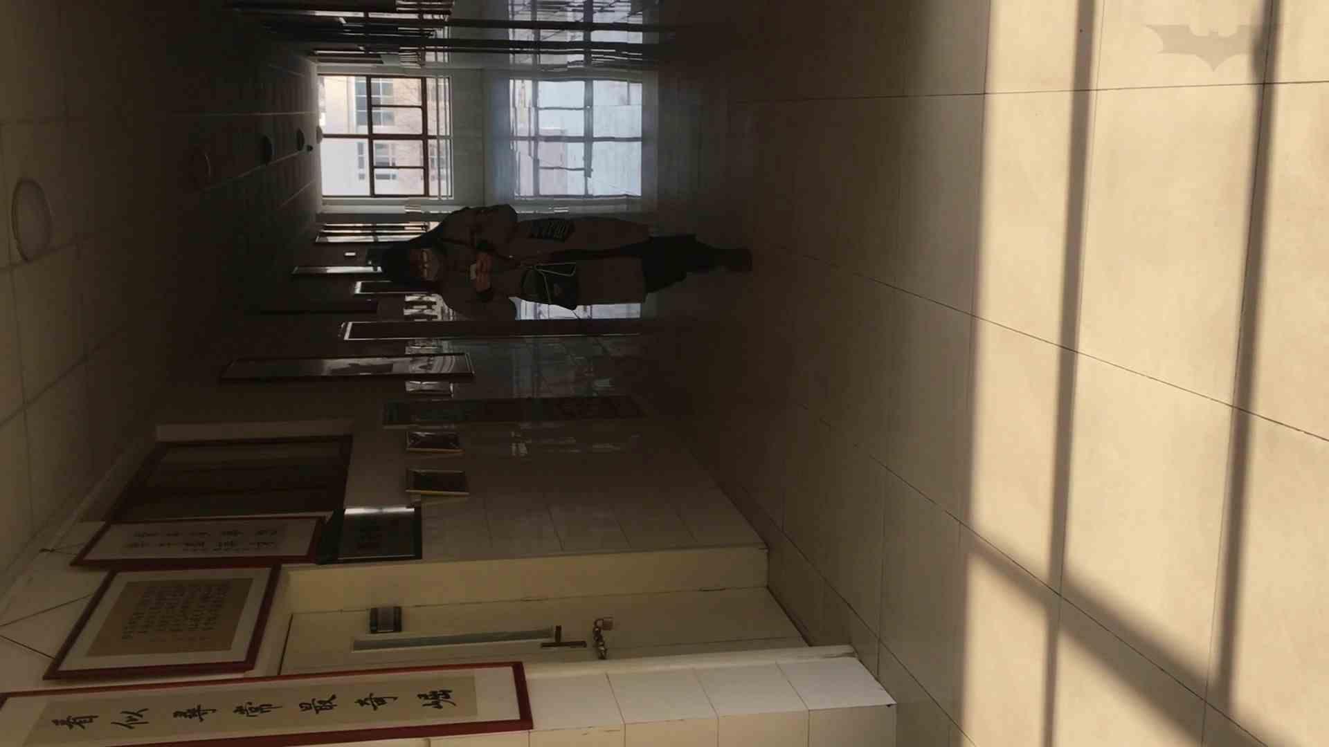 芸術大学ガチ潜入盗撮 JD盗撮 美女の洗面所の秘密 Vol.88 細身体型 | 美女  83枚 67