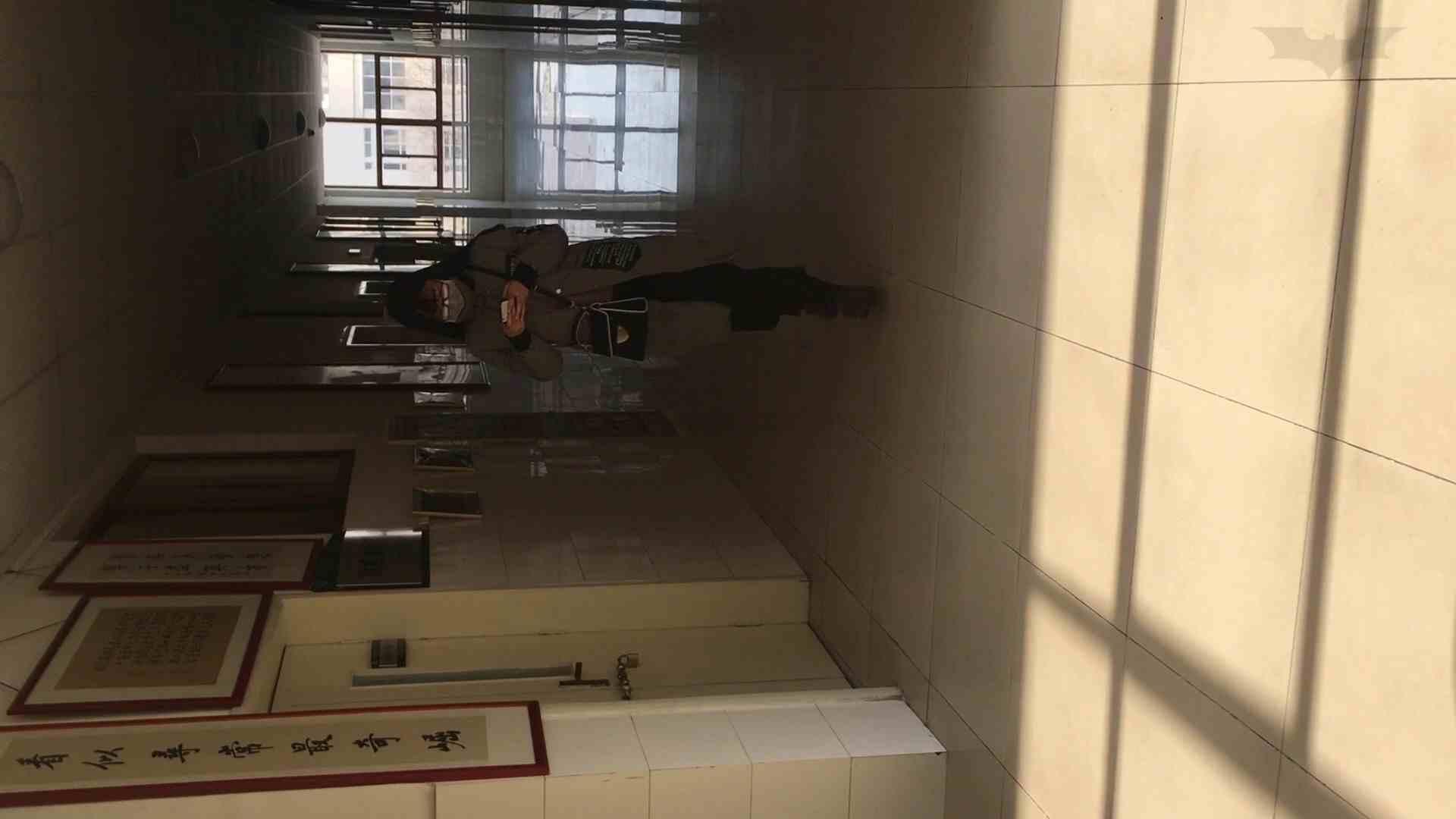 芸術大学ガチ潜入盗撮 JD盗撮 美女の洗面所の秘密 Vol.88 ギャル達 スケベ動画紹介 83枚 68
