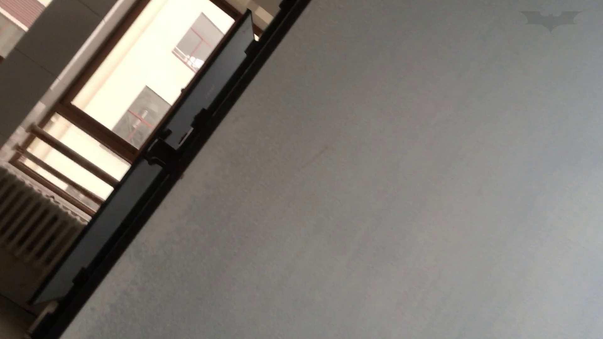 芸術大学ガチ潜入盗撮 JD盗撮 美女の洗面所の秘密 Vol.89 美肌 | 細身体型  75枚 49