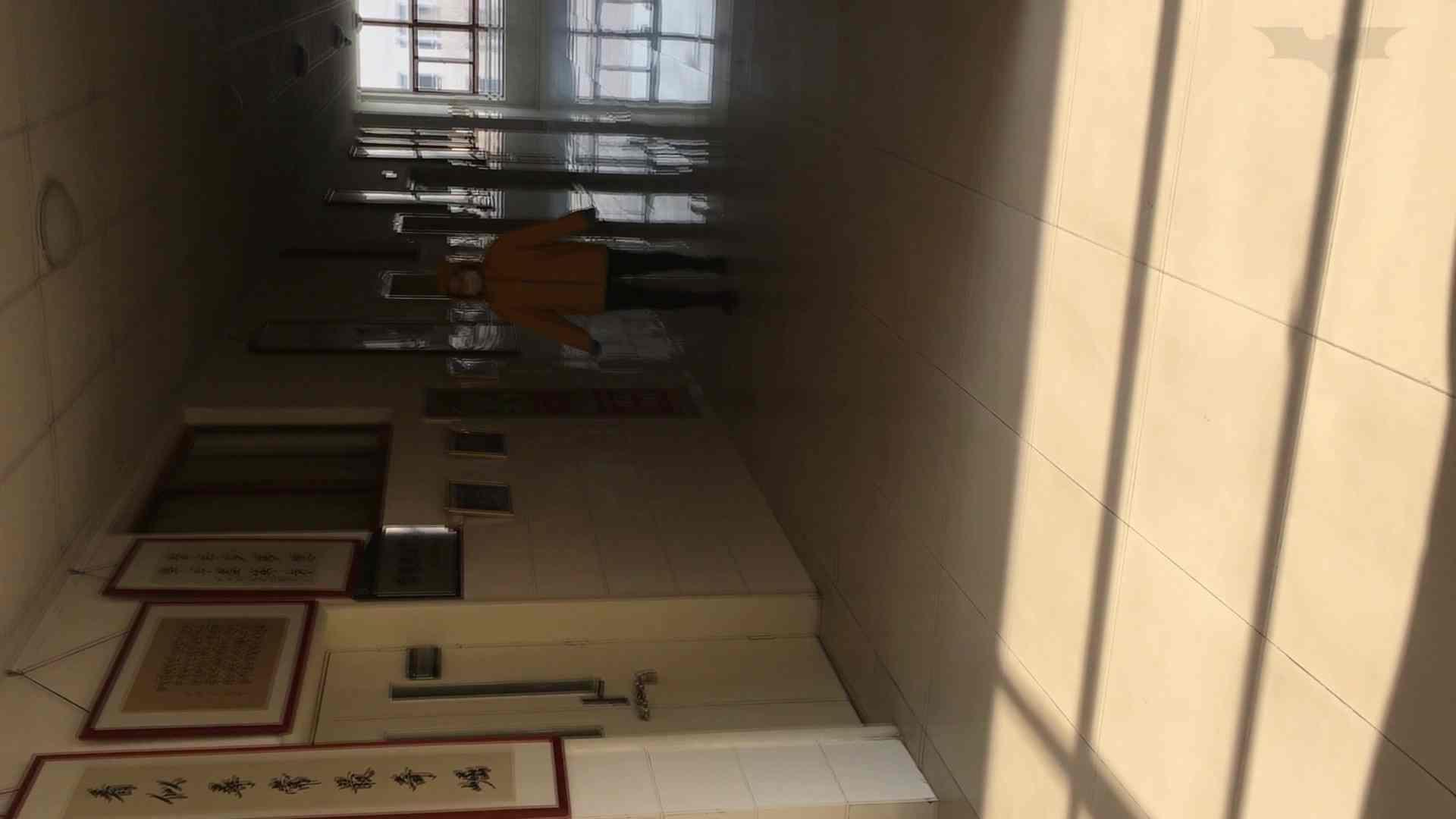 芸術大学ガチ潜入盗撮 JD盗撮 美女の洗面所の秘密 Vol.91 ギャル達 AV無料動画キャプチャ 85枚 13