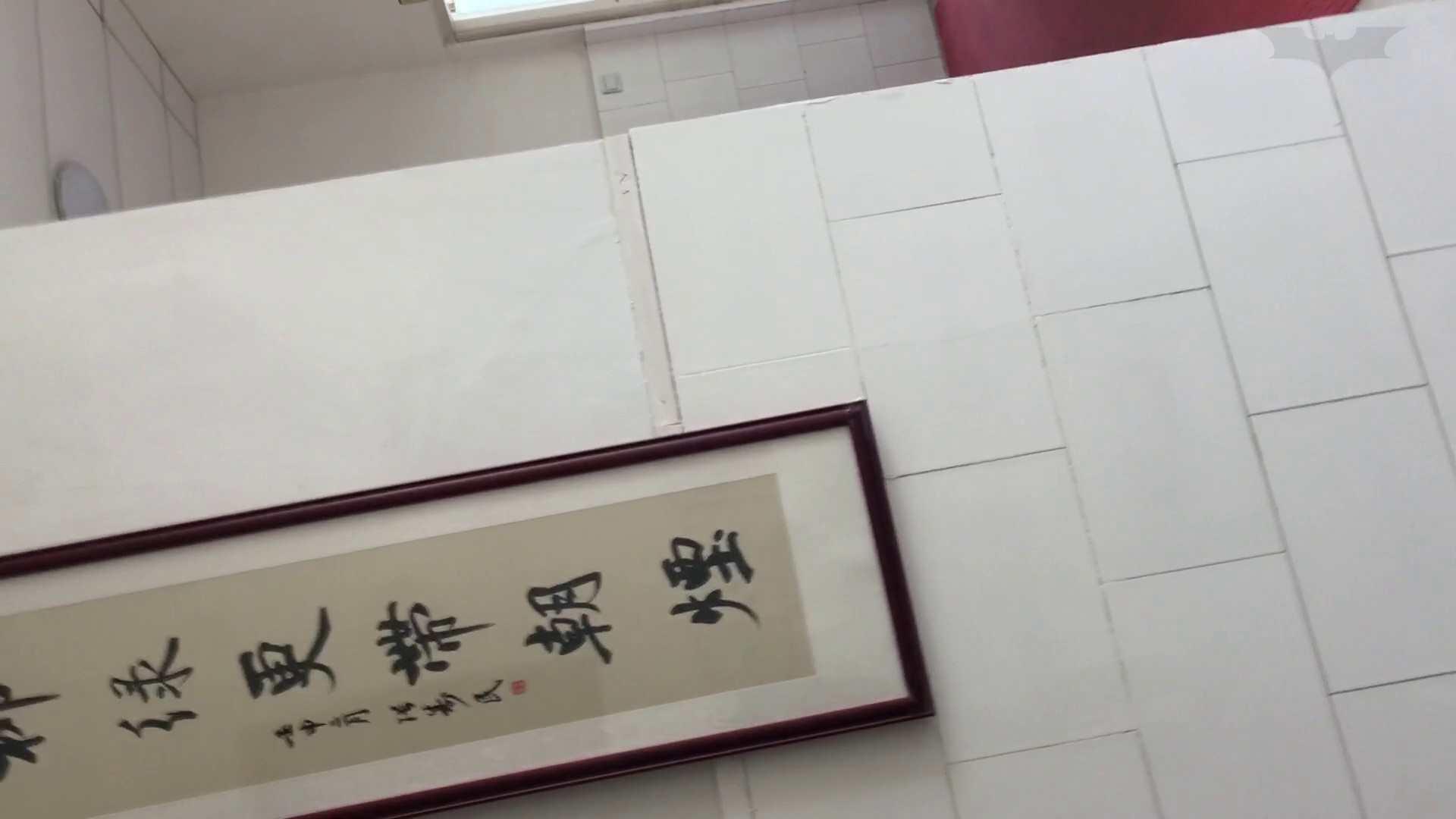 芸術大学ガチ潜入盗sati JD盗撮 美女の洗面所の秘密 Vol.95 美肌  85枚 65