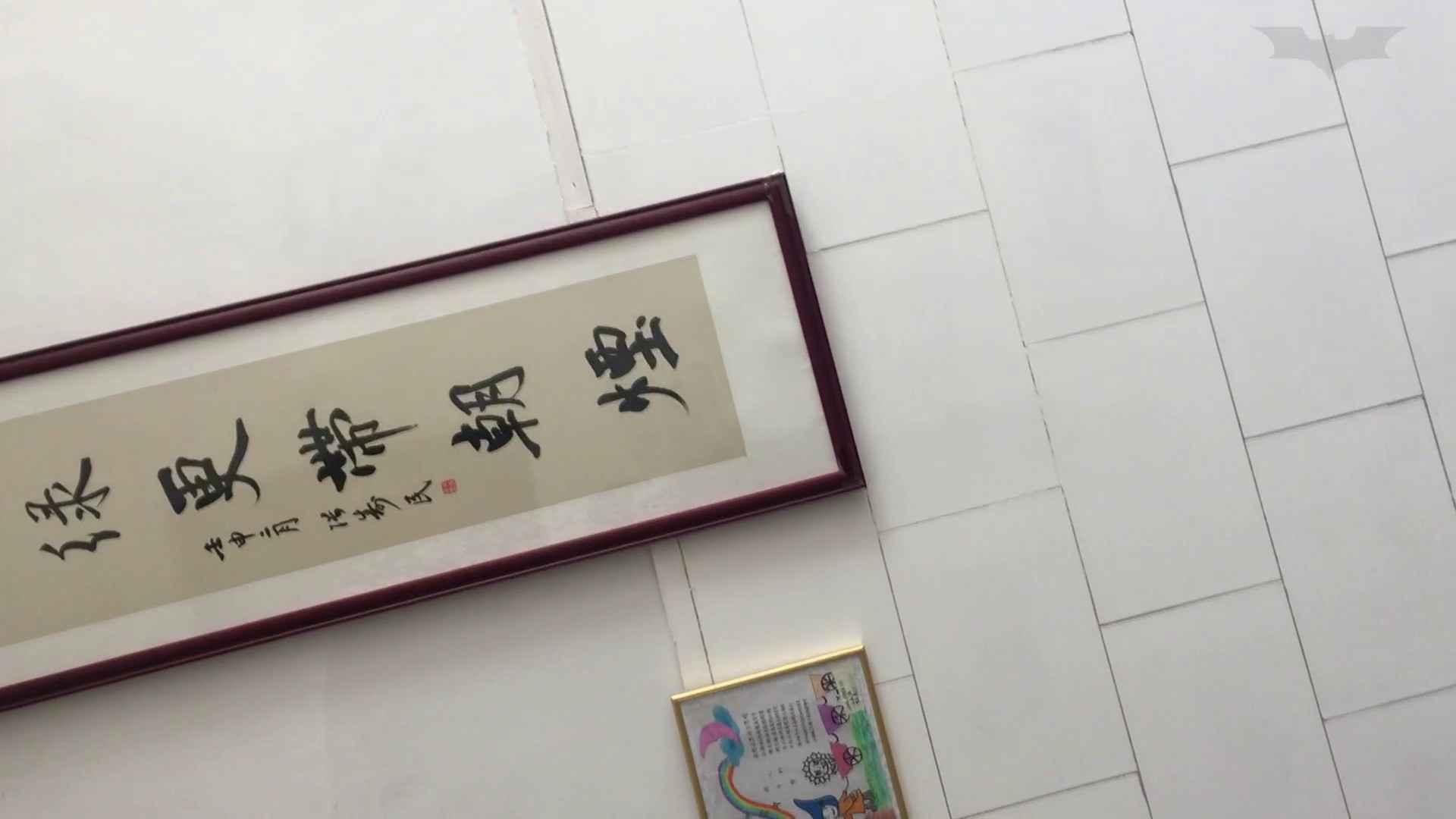 芸術大学ガチ潜入盗sati JD盗撮 美女の洗面所の秘密 Vol.95 美肌 | トイレ盗撮  85枚 66