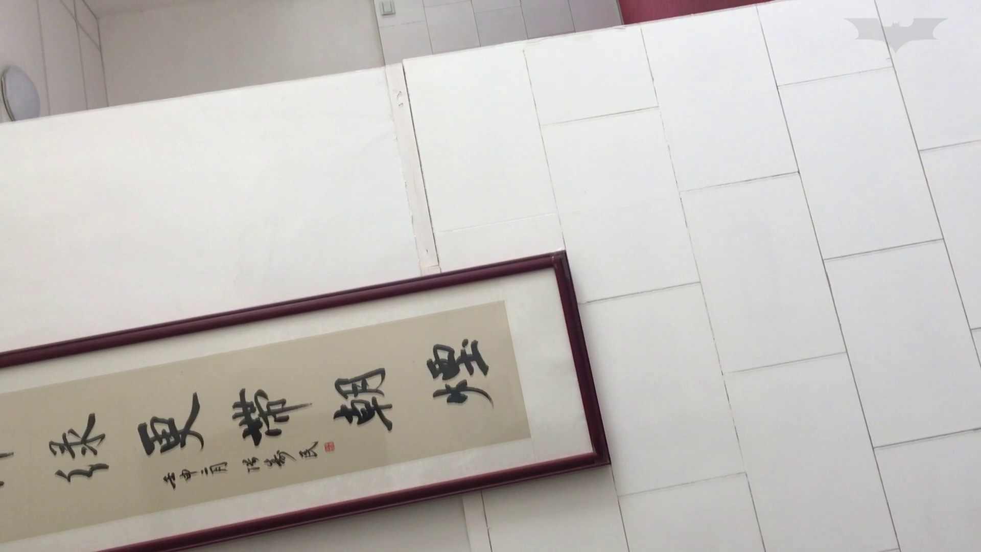 芸術大学ガチ潜入盗sati JD盗撮 美女の洗面所の秘密 Vol.95 ギャル達 ヌード画像 85枚 67