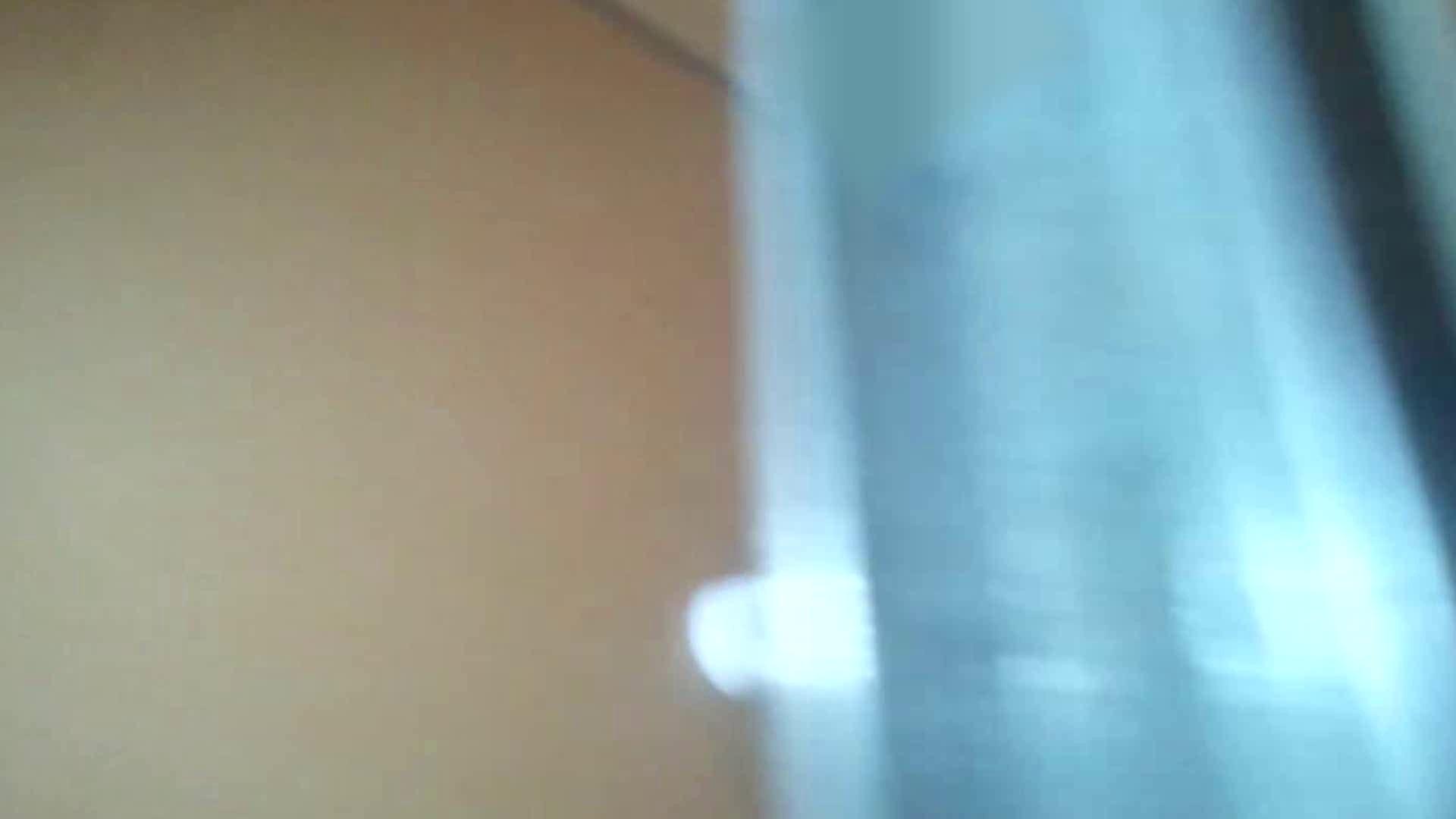 化粧室絵巻 商い場編 VOL.09 ちょっと追ったりしてみました。 女子トイレ アダルト動画キャプチャ 98枚 11