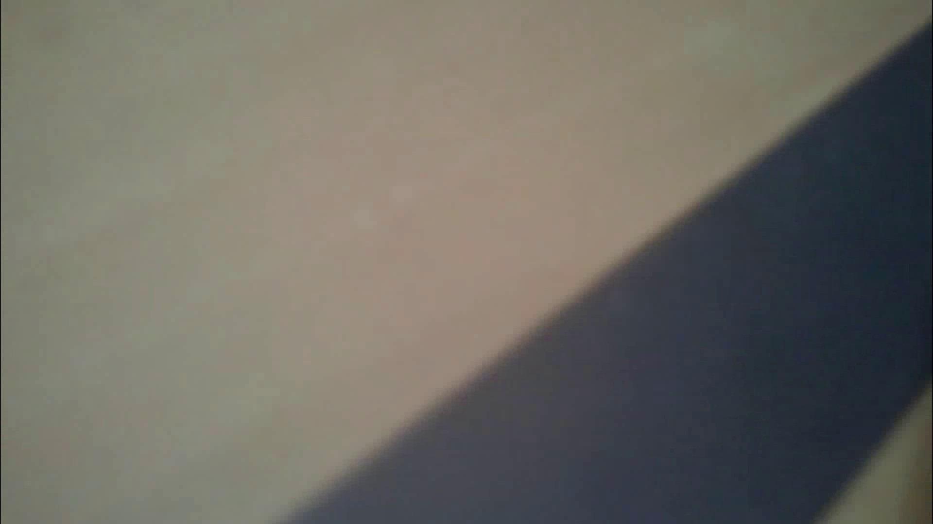 化粧室絵巻 商い場編 VOL.09 ちょっと追ったりしてみました。 トイレ盗撮 アダルト動画キャプチャ 98枚 86
