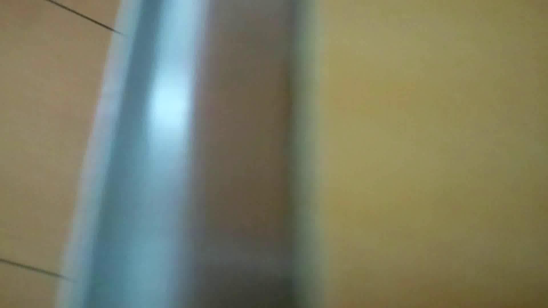 化粧室絵巻 商い場編 VOL.14 お姉さんのSEX えろ無修正画像 78枚 69