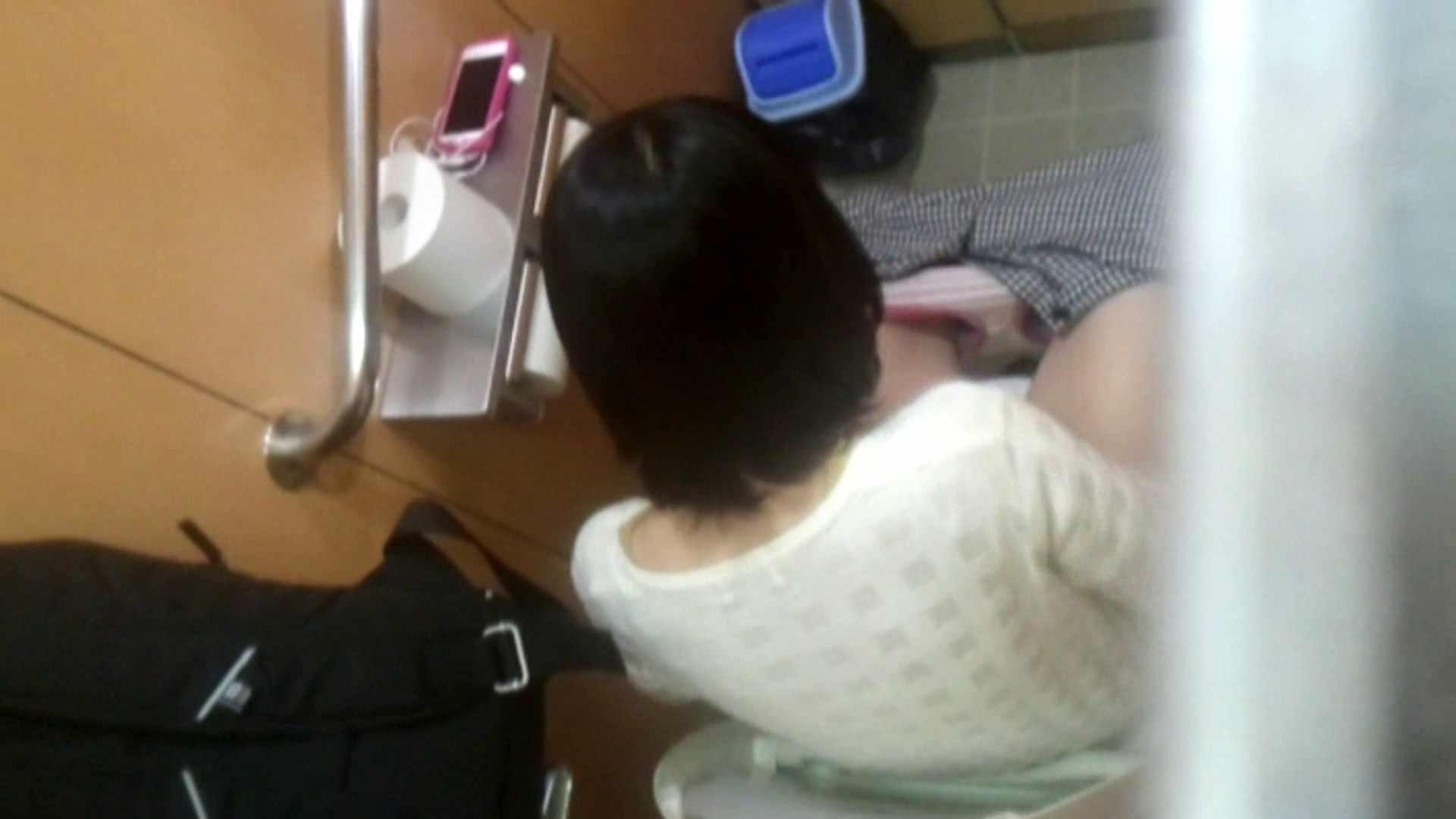 化粧室絵巻 商い場編 VOL.15 お姉さんのSEX 濡れ場動画紹介 78枚 63